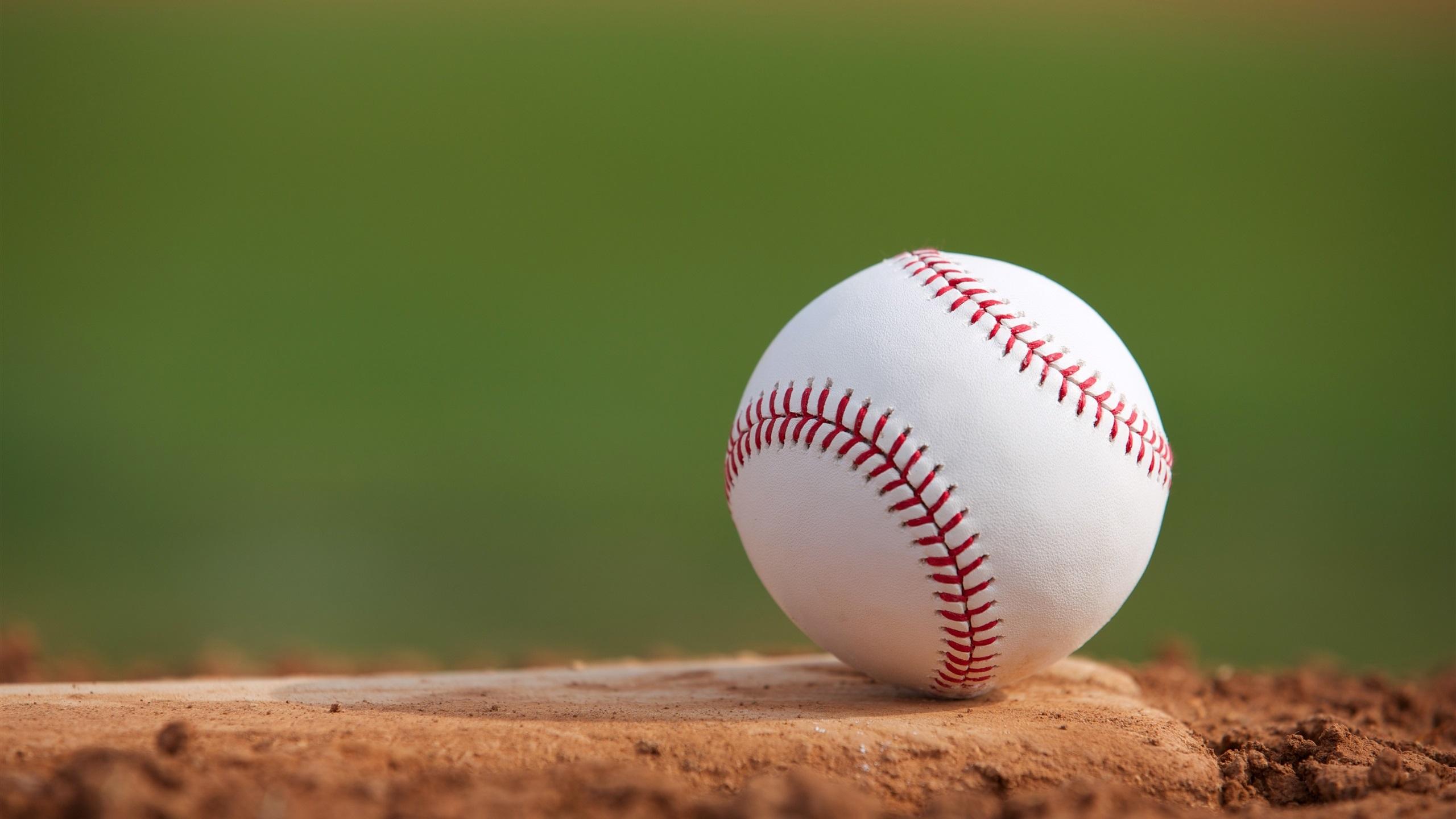 壁紙 地面に野球 2560x1600 Hd 無料のデスクトップの背景 画像