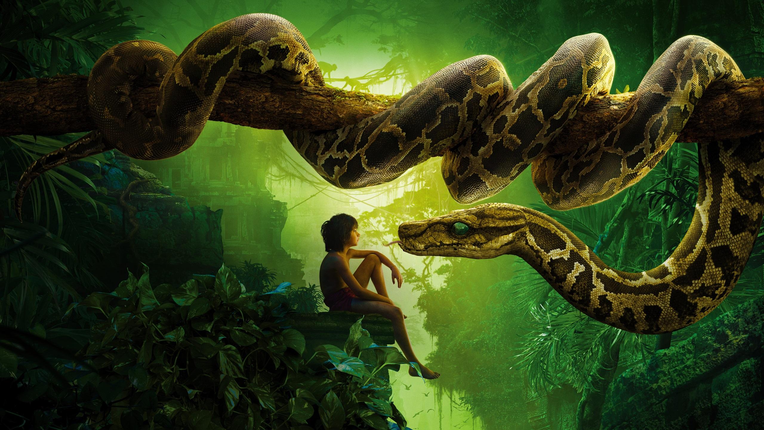 2016年奇幻森林,男孩和蛇 壁纸 - 2560x1440 qhd高清