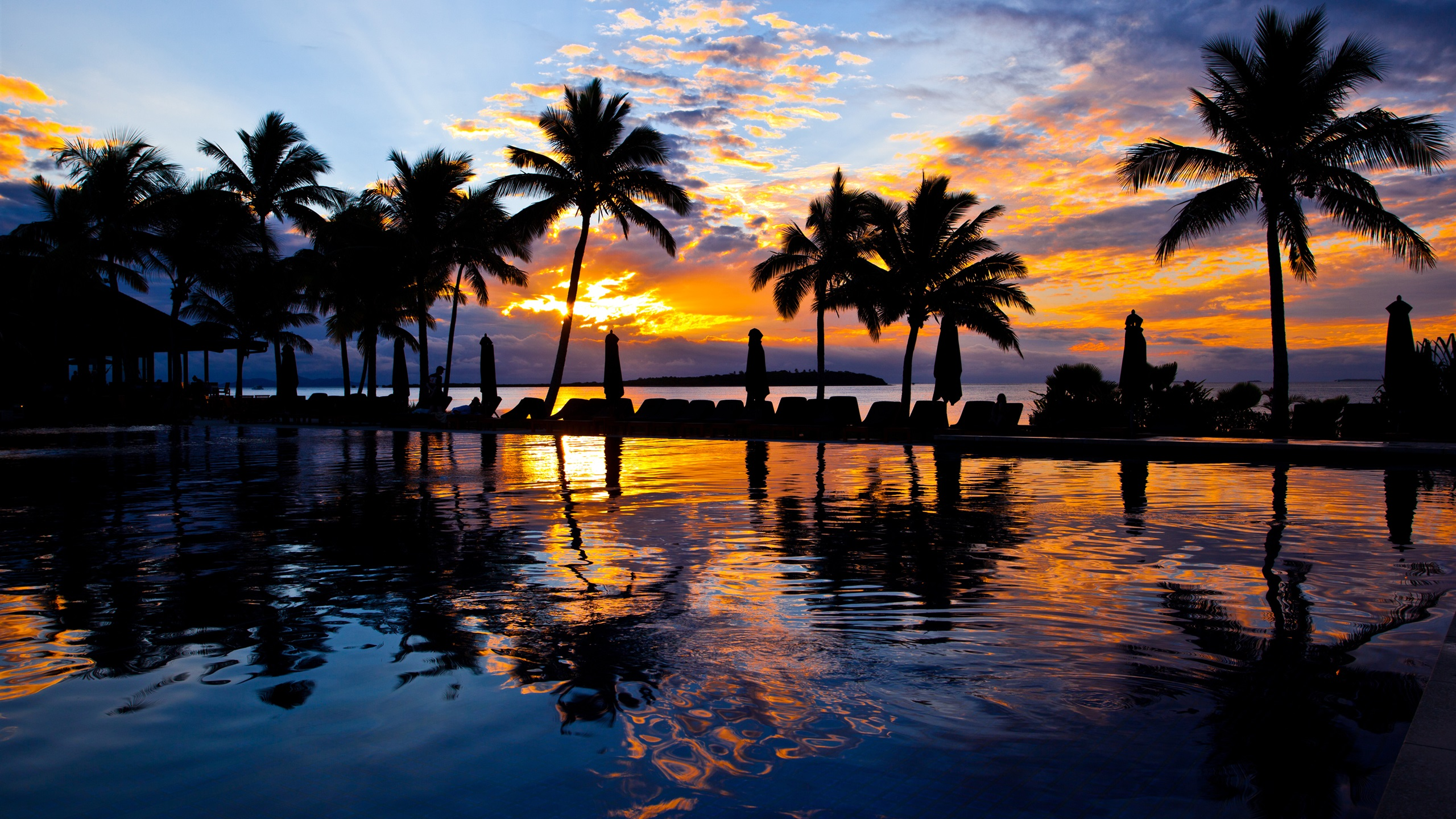 Fondos De Pantalla Iphone 7 Plus: Palmeras, Piscina, Agua, Mar, Playa, Puesta Del Sol, La