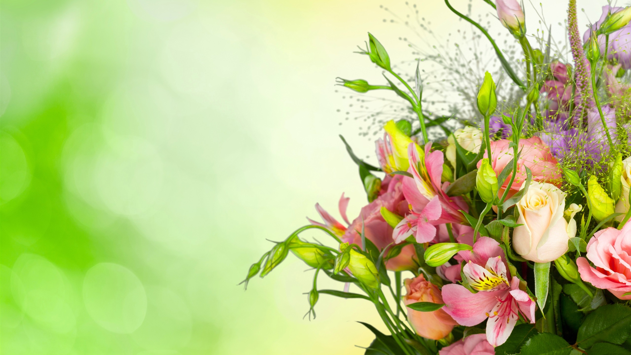 обои для рабочего стола эустома цветы № 634114 без смс