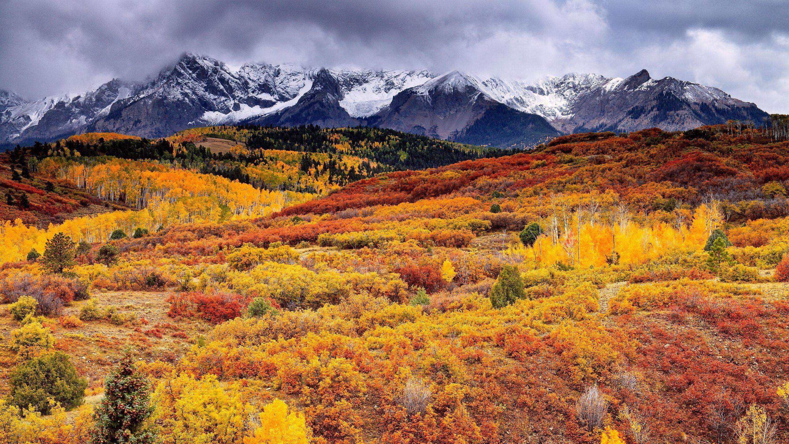 foto de Fonds d'écran Beau paysage d'automne, forêt, montagnes, nuages ...