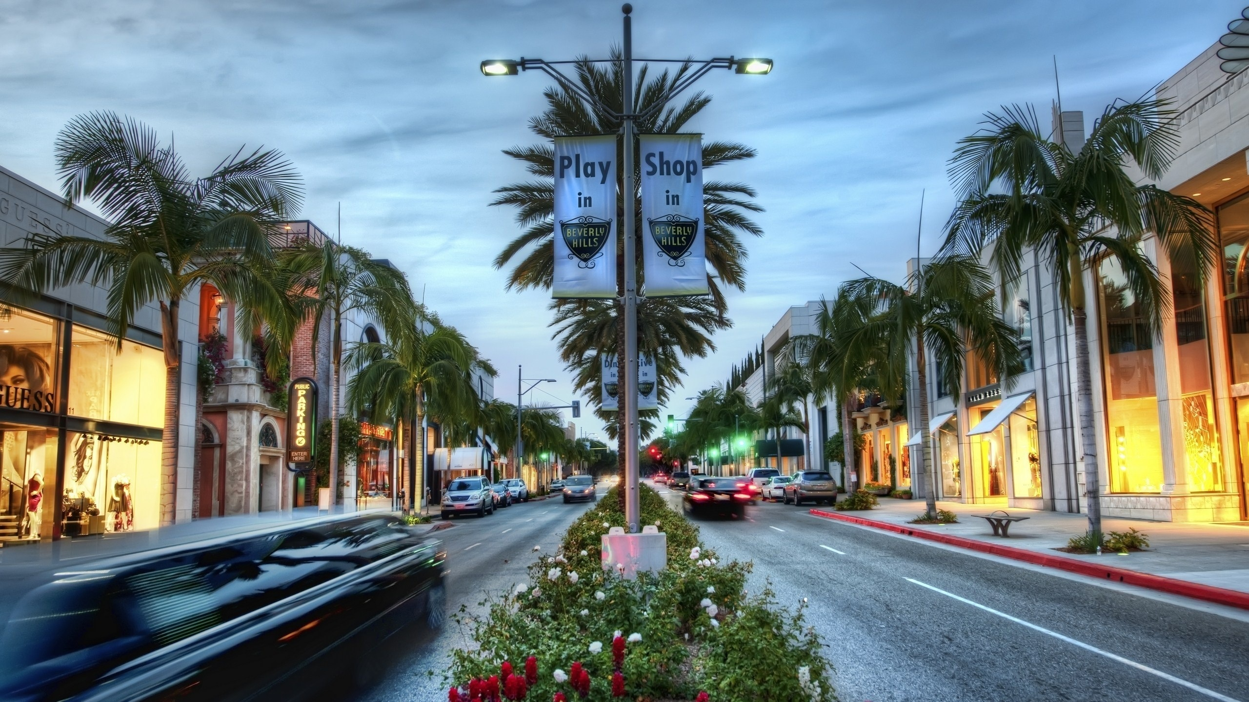 Wallpaper Los Angeles Hollywood Shop Palm Trees Hdr Style Usa