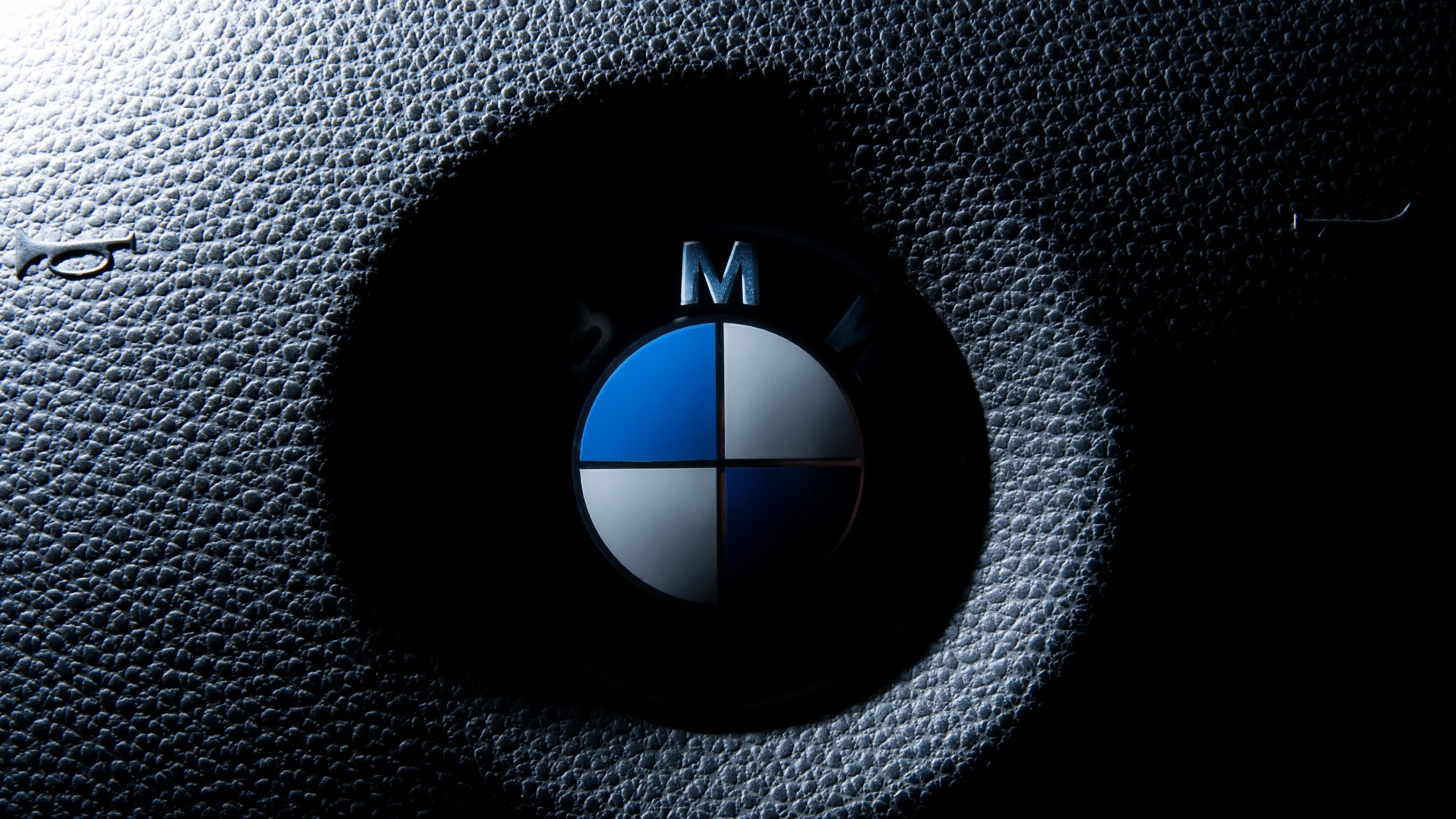 Wallpaper Bmw Logo Macro Photography 2560x1440 Qhd Picture Image