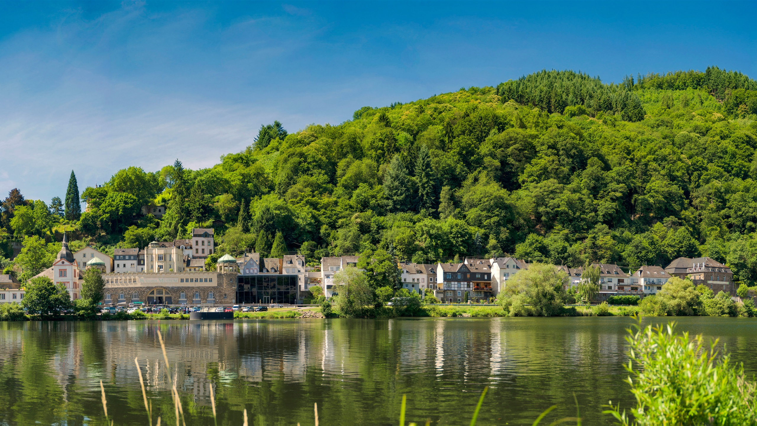 Wallpaper traben trarbach germany river houses trees for Wallpaper with houses on it