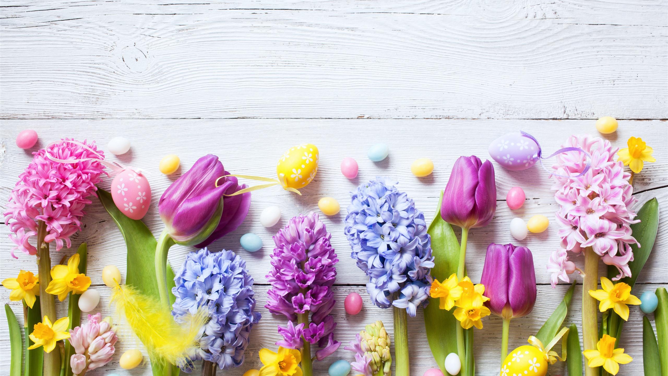 Fondos De Pantalla 1440x900 Tulipas Pascua Fondo De Color: Fondos De Pantalla Pascua, Flores De Colores, Narcisos
