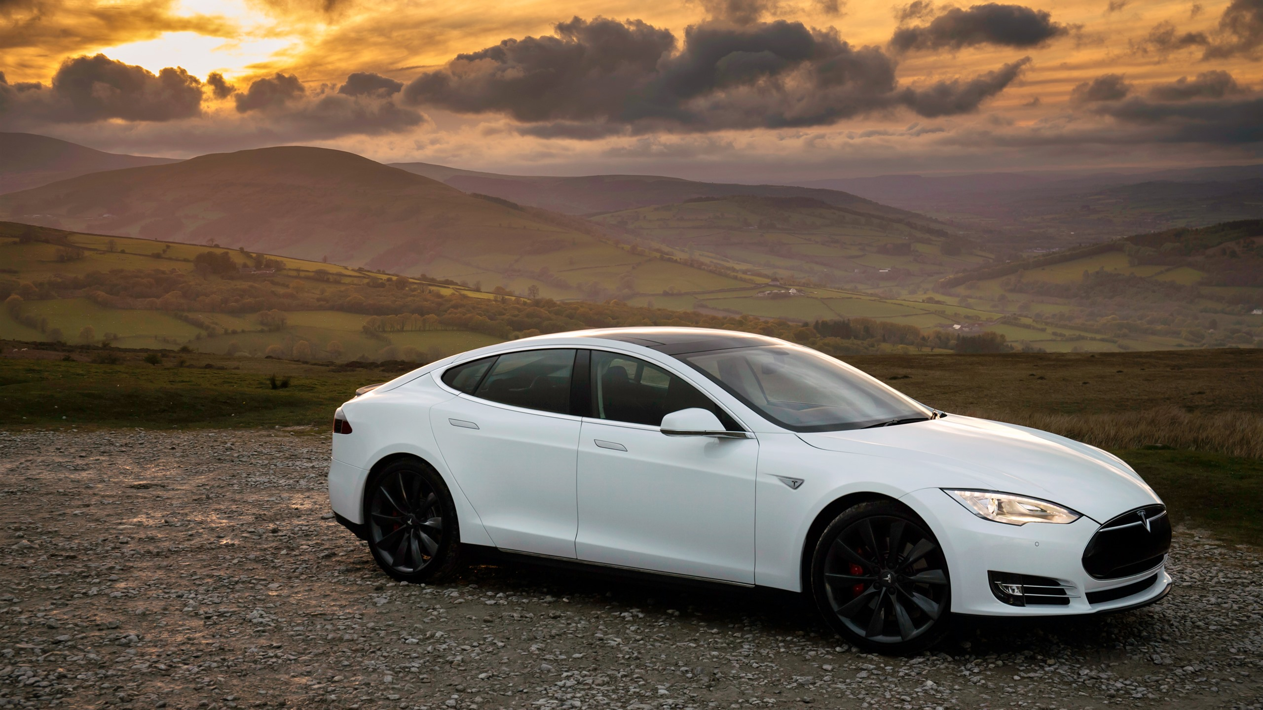 Tesla Model S White Car Side View 1242x2688 Iphone Xs Max