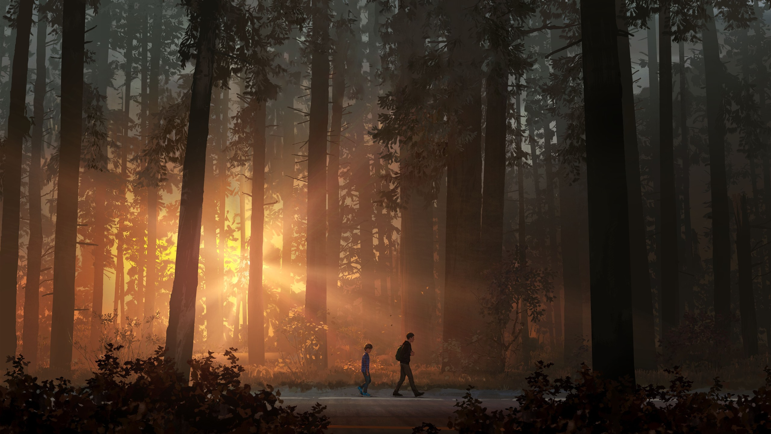 Life Is Strange 2 Game Art Picture Forest Sun Rays 1242x2688