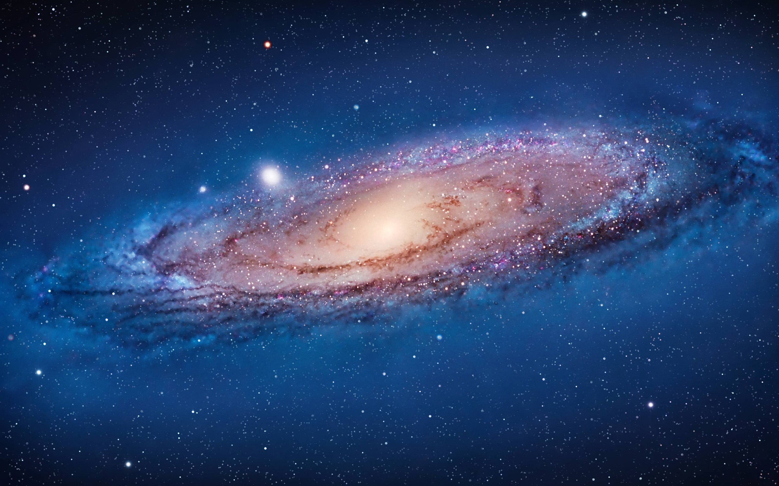 Wallpaper The Andromeda Galaxy In Space 2560x1600 Hd Picture