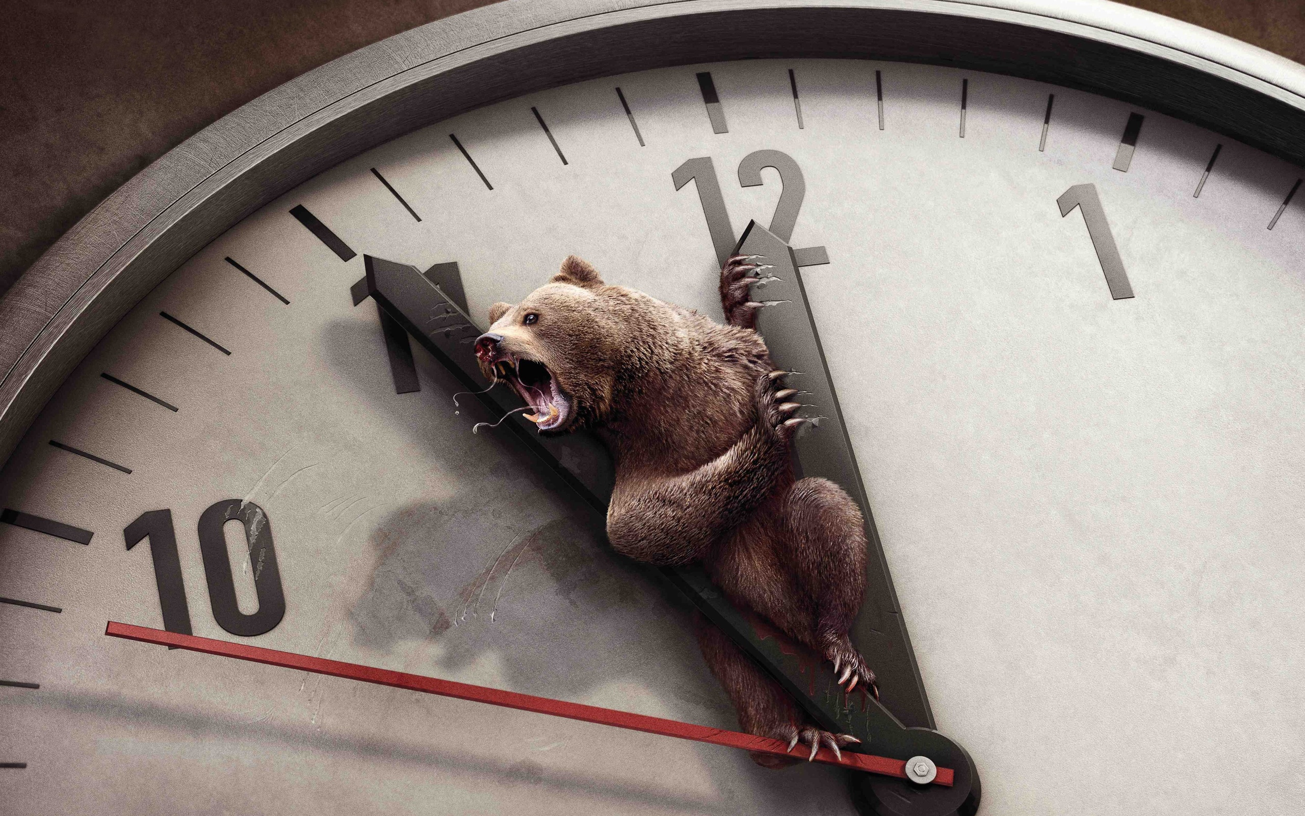 Creative picture of bear on the clock dial wallpaper - 2560x1600