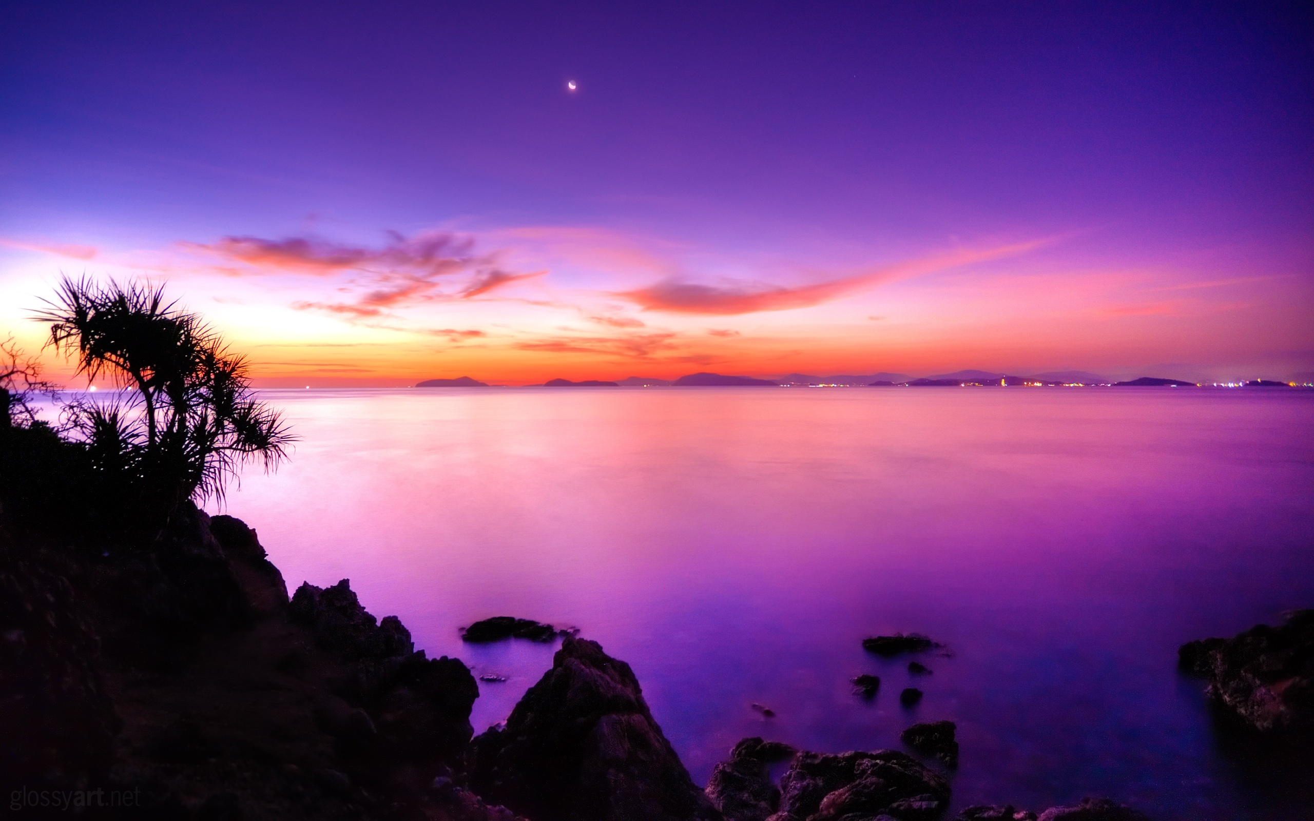 Wallpaper The Purple Sunset Of The Coast 2560x1600 Hd Picture Image