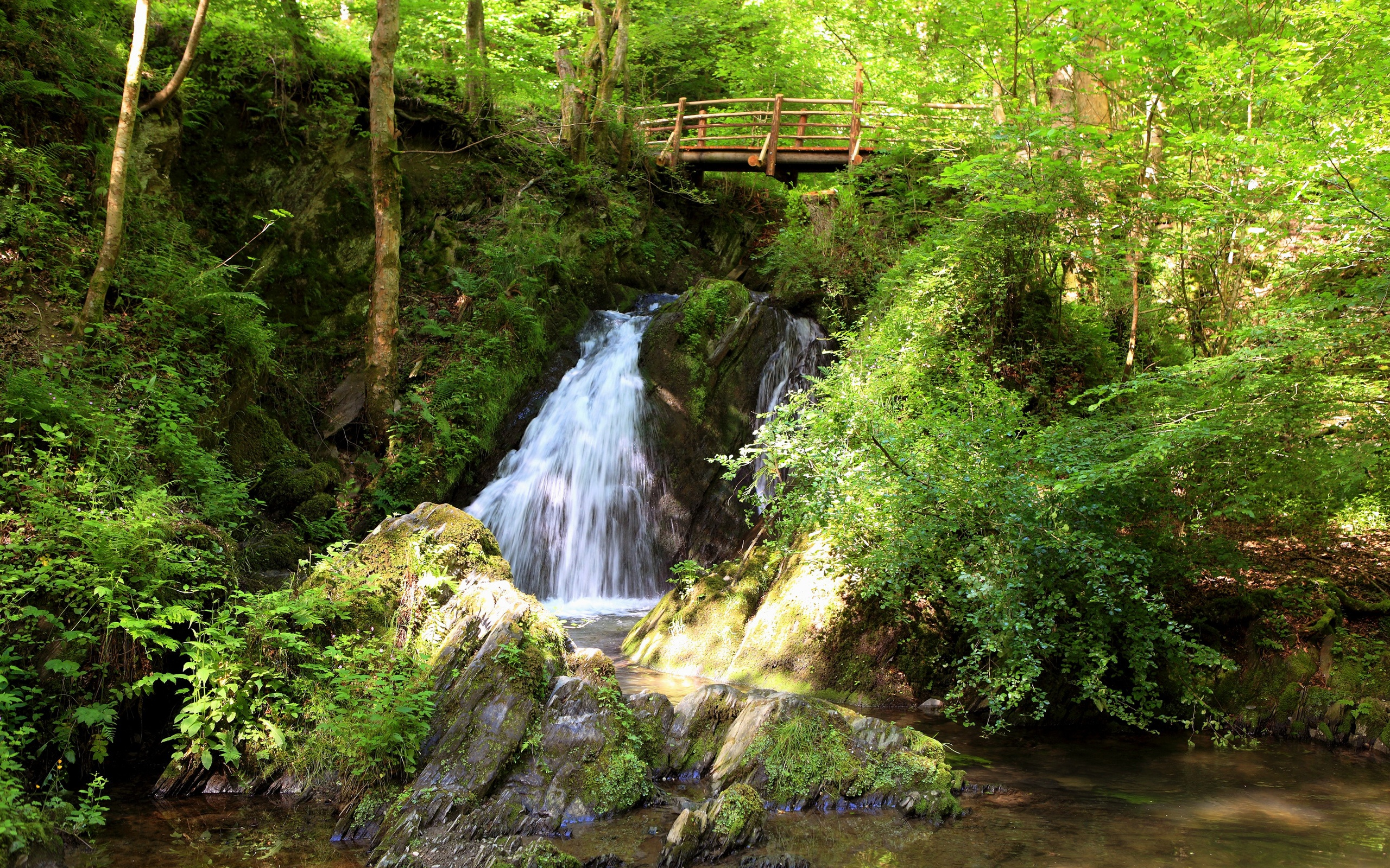 2560x1600 hd for Pictures of small waterfalls