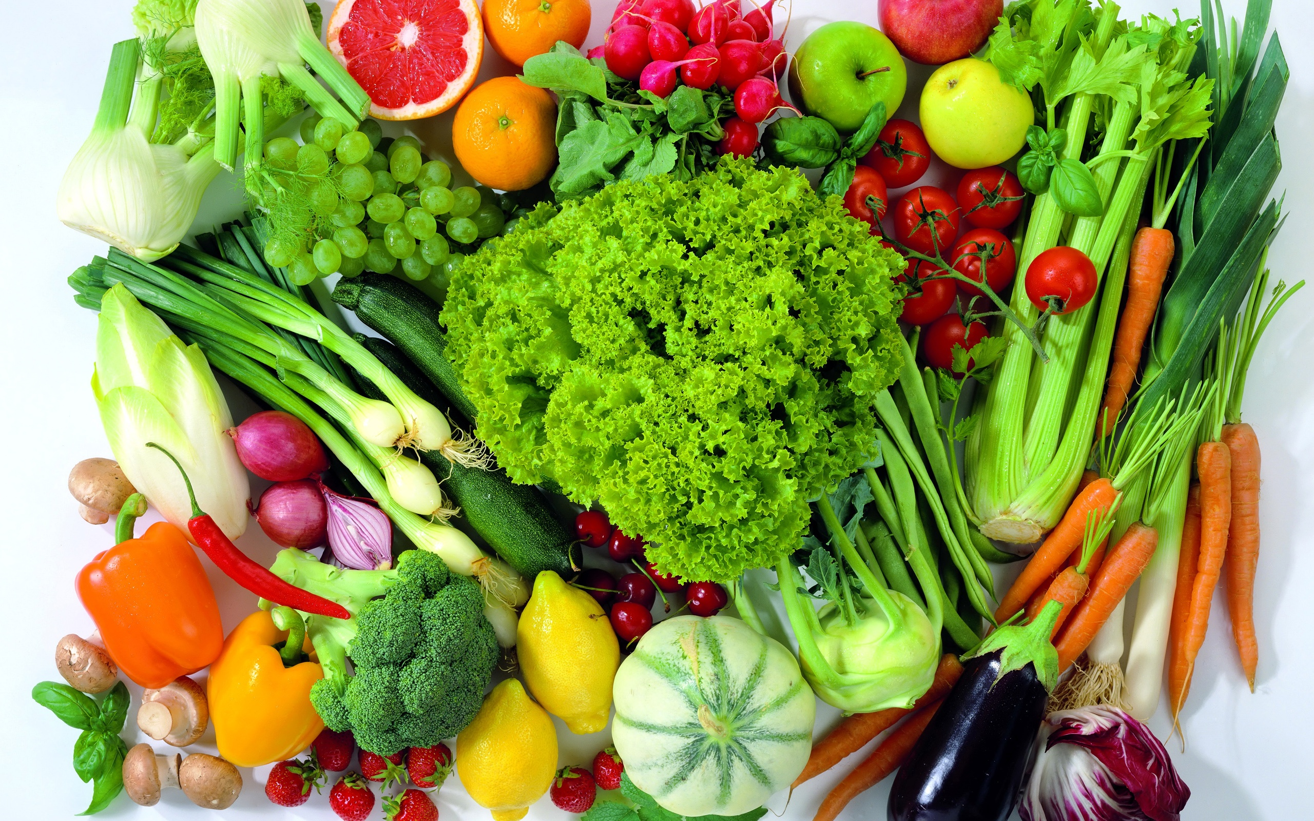 importance of organic foods essay