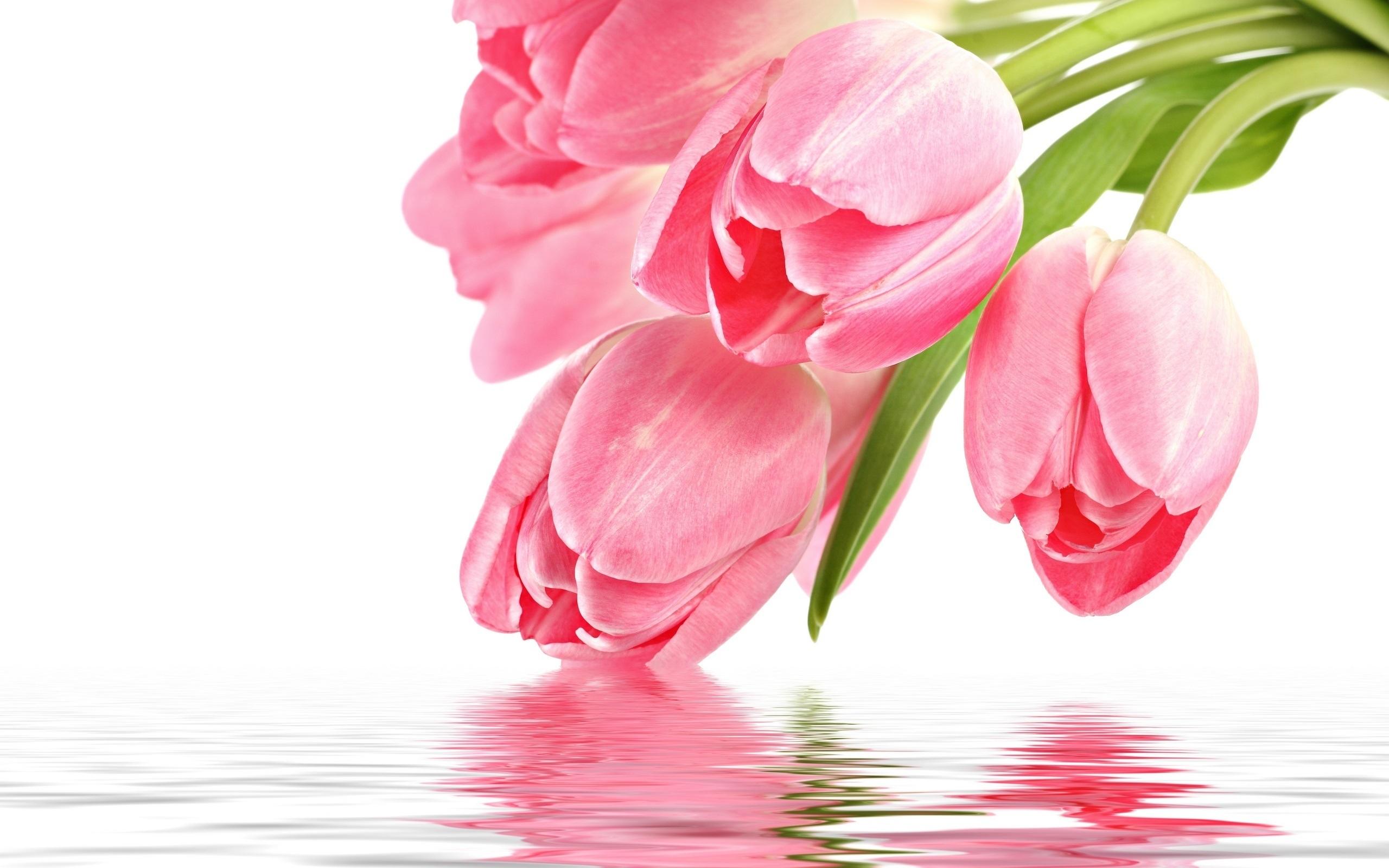 Открытки цветы с текстом, открытки