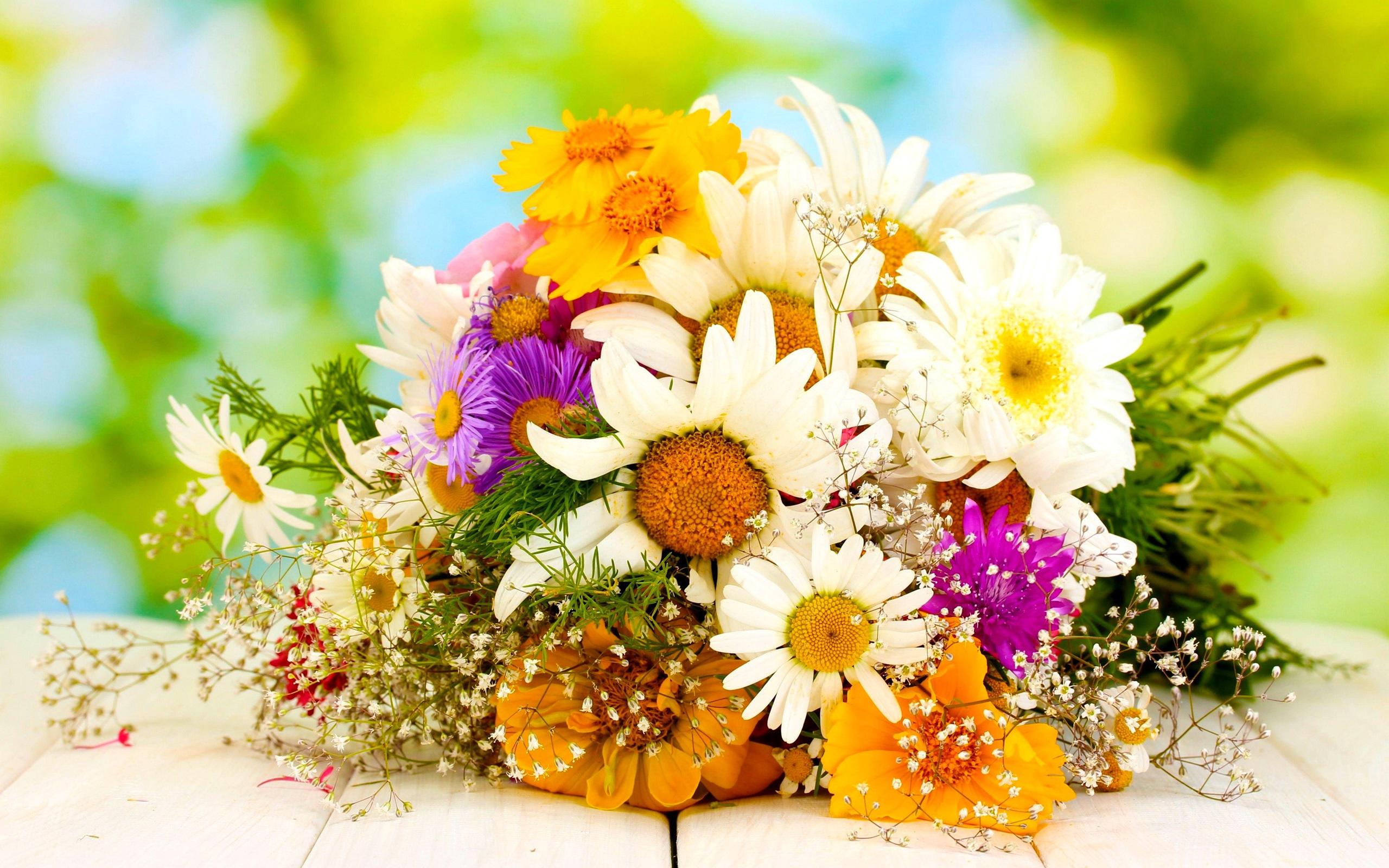 Букет полевых цветов бесплатно