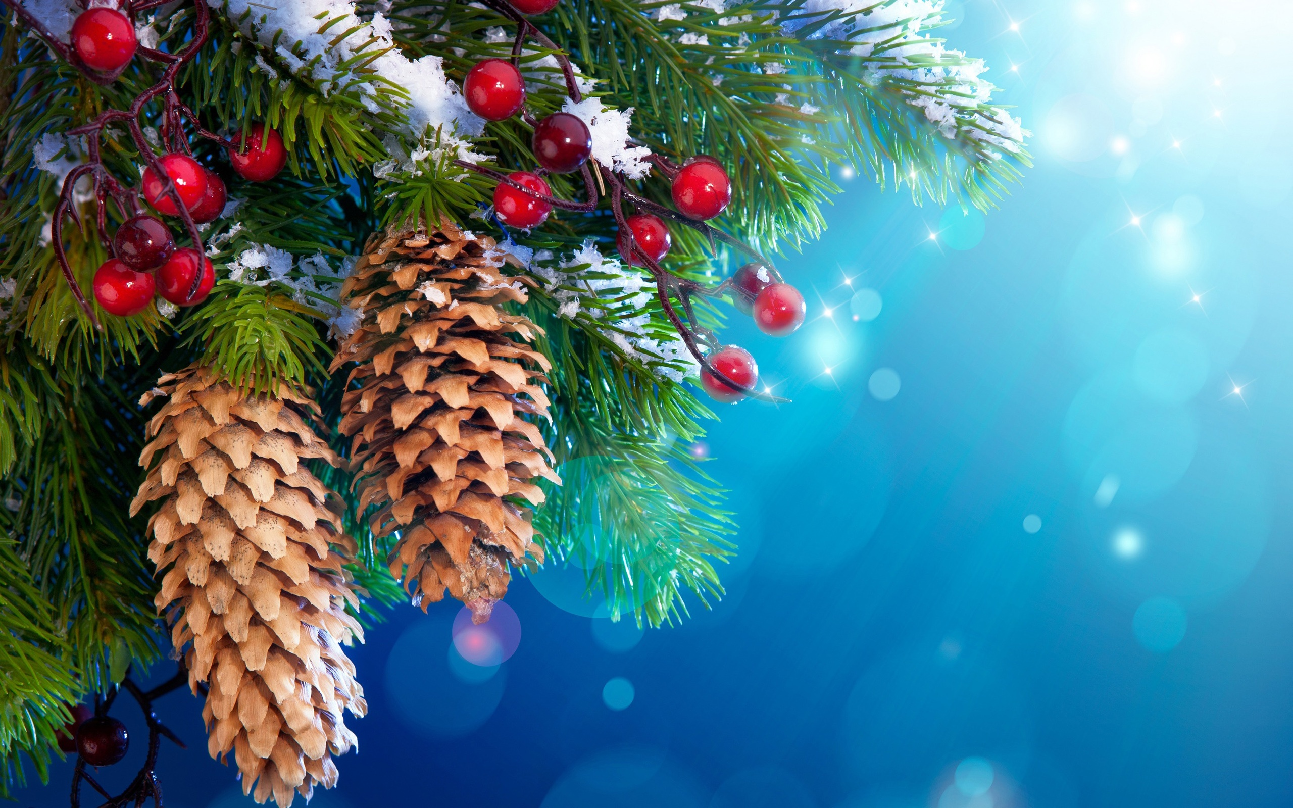 Wallpaper New Year Christmas Tree Decoration Snow Twigs Berries