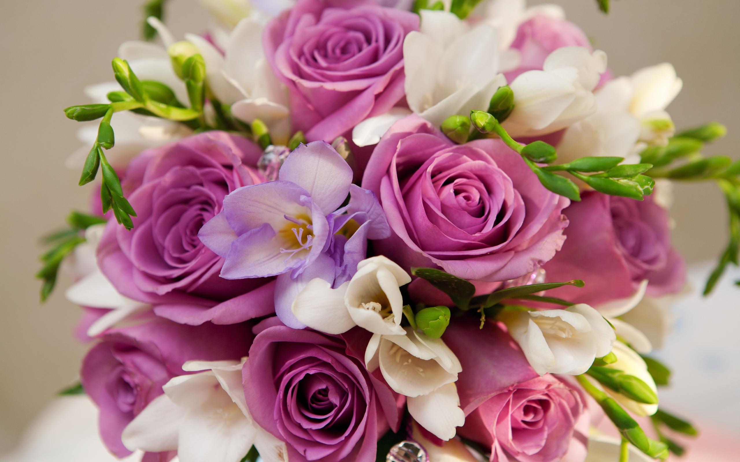 Fonds D Ecran Fleurs Violettes Roses Bouquet 2560x1600 Hd Image