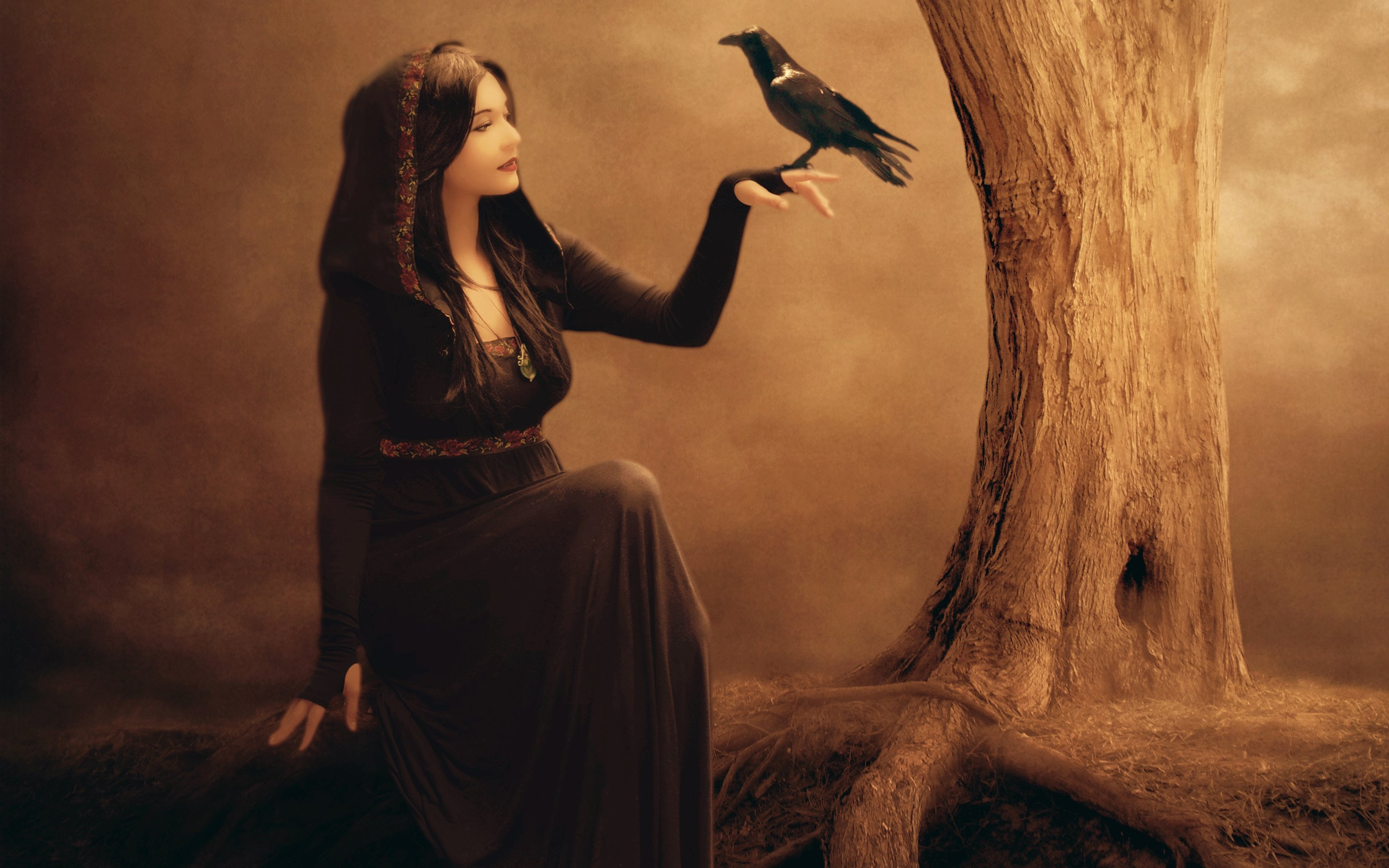 Schne Fantasy Girl, Rabe, Baum, Hexe, Schwarzes Kleid -4270