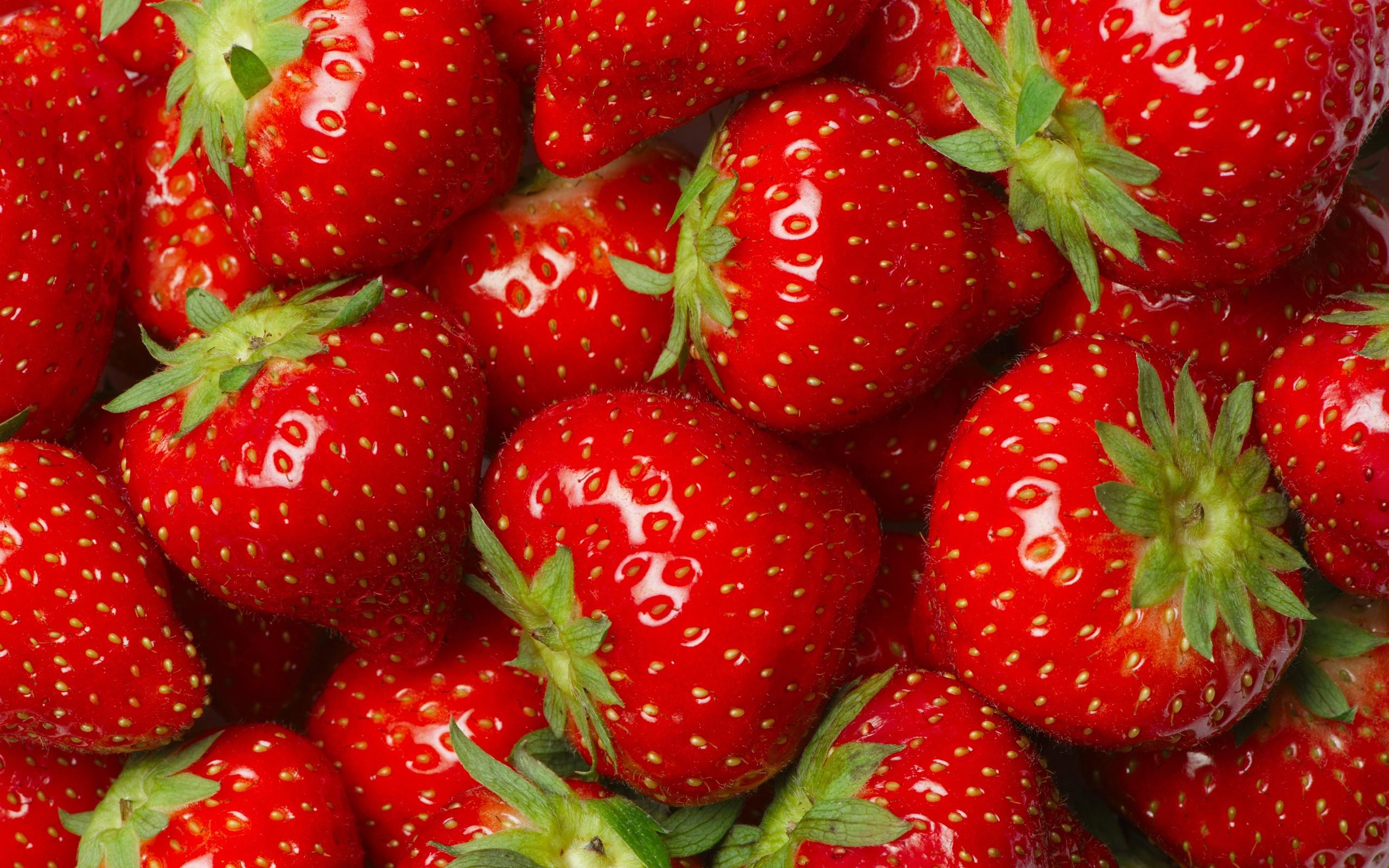 壁紙 多くのイチゴ 赤 フルーツ おいしい 2560x1600 Hd 無料の