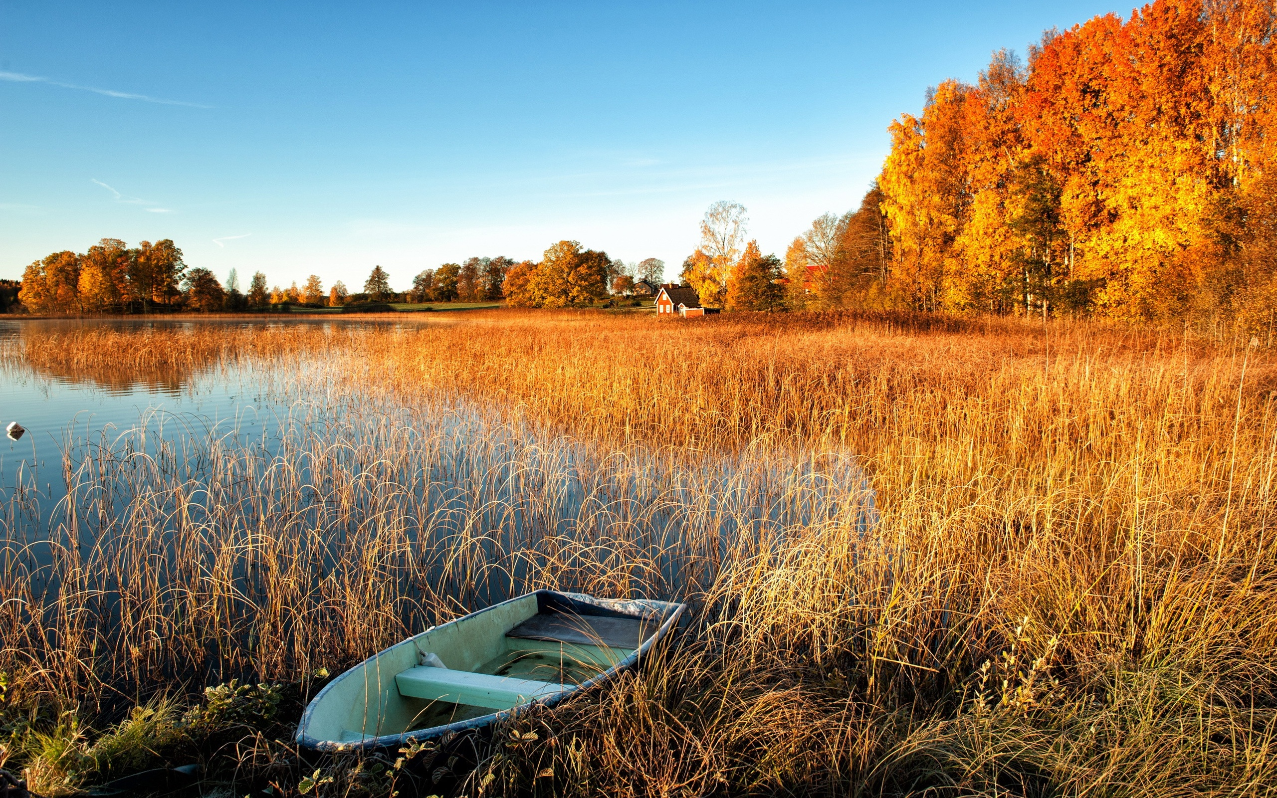 Wallpaper Autumn Scenery Lake Water Grass Boat Trees