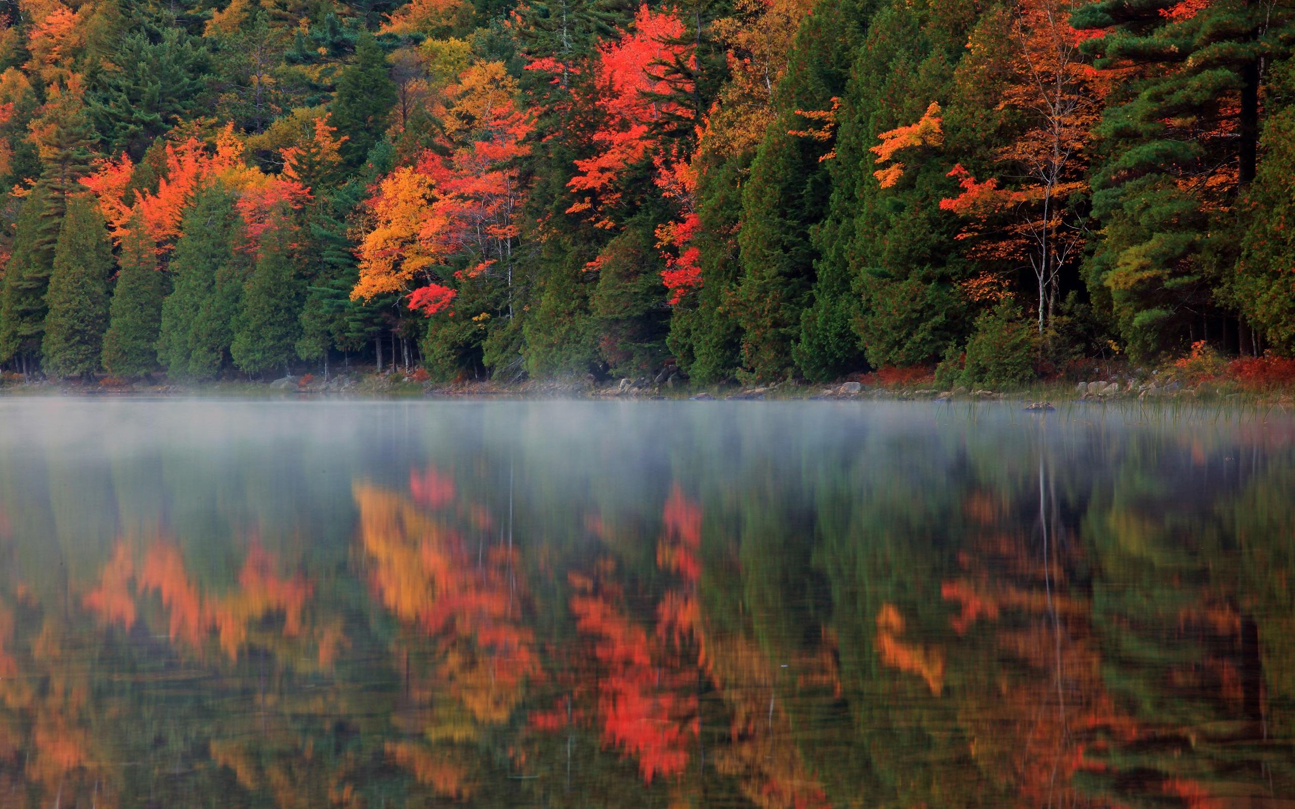 река осень скачать
