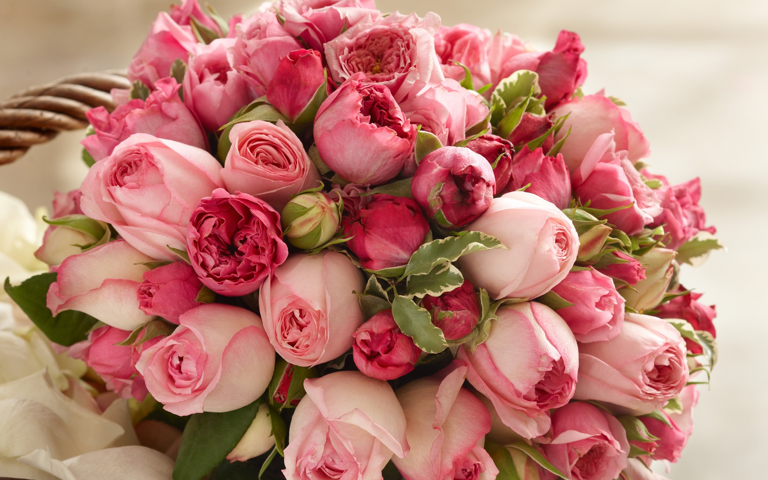 ダウンロード壁紙 2560x1600 ピンクの花、美しい花束をバラ HDのデスクトップの背景