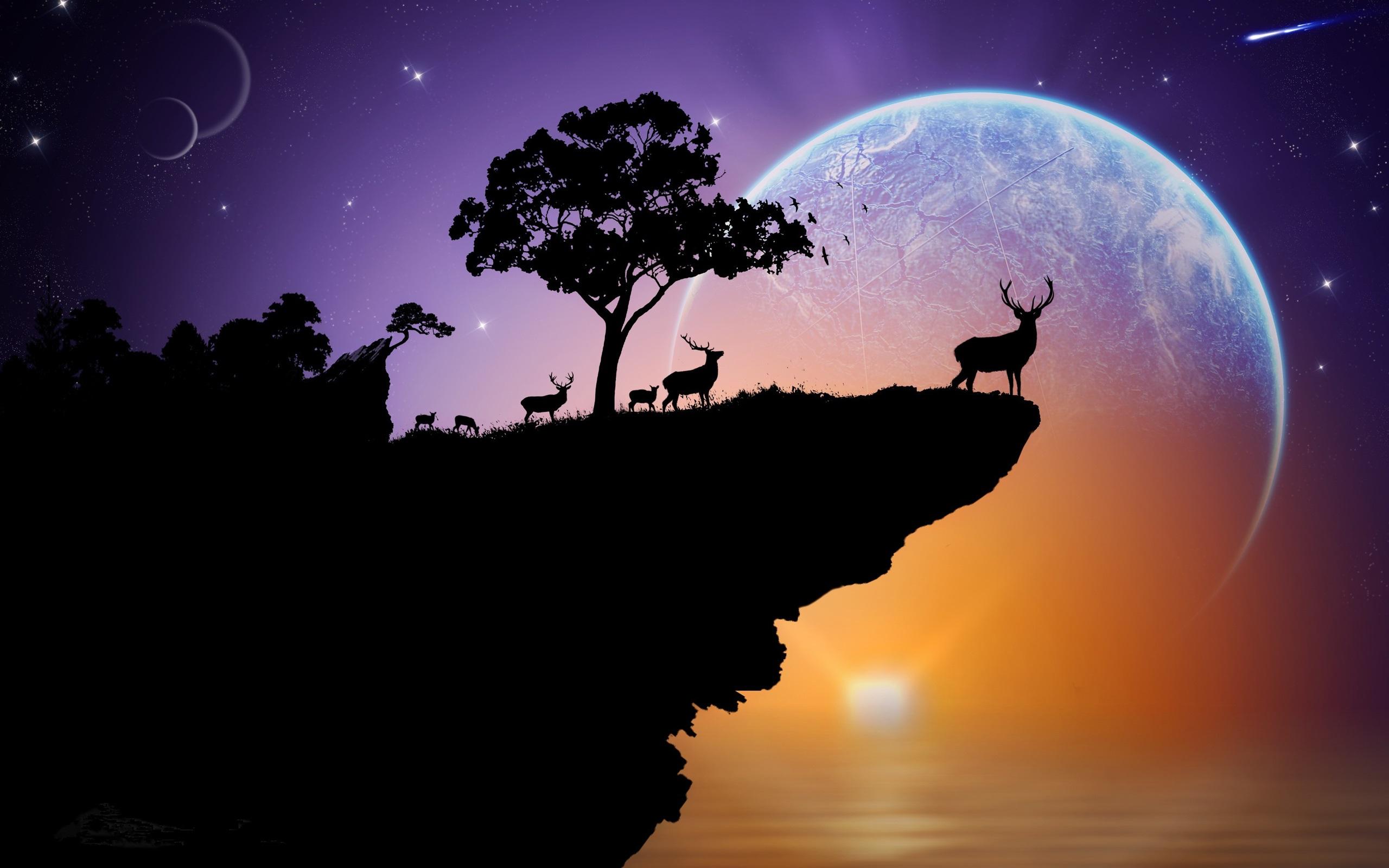 壁紙 シルエット 鹿 地球 空 星 木 岩 日没 創造的 2560x1600