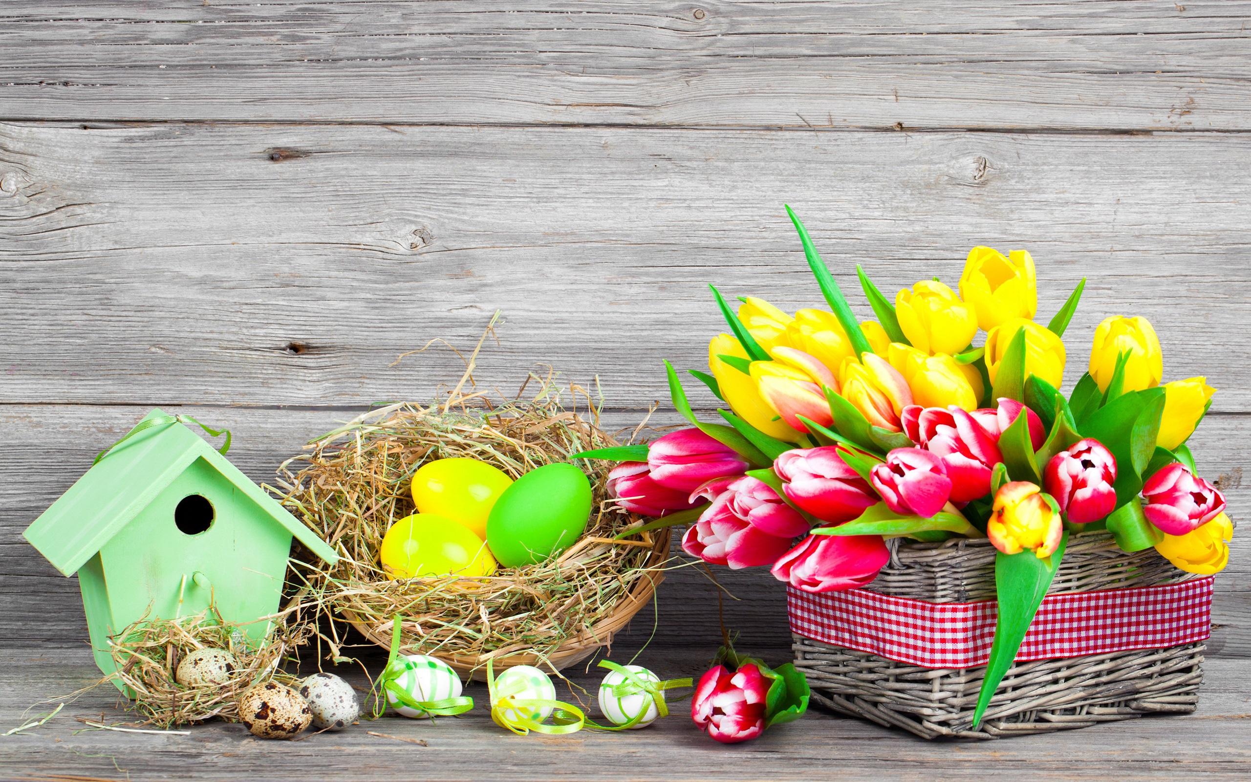 Ostern fr hling blumen eier bunt rot und gelbe tulpen - Ostern wallpaper ...