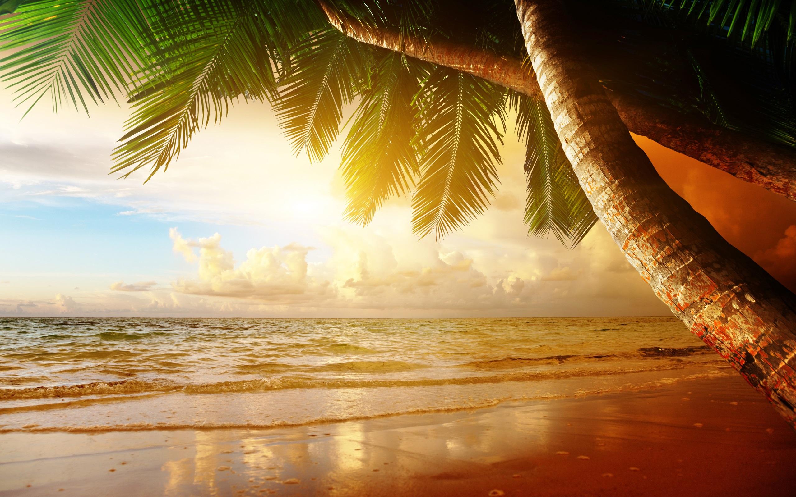 Картинки моря и лета