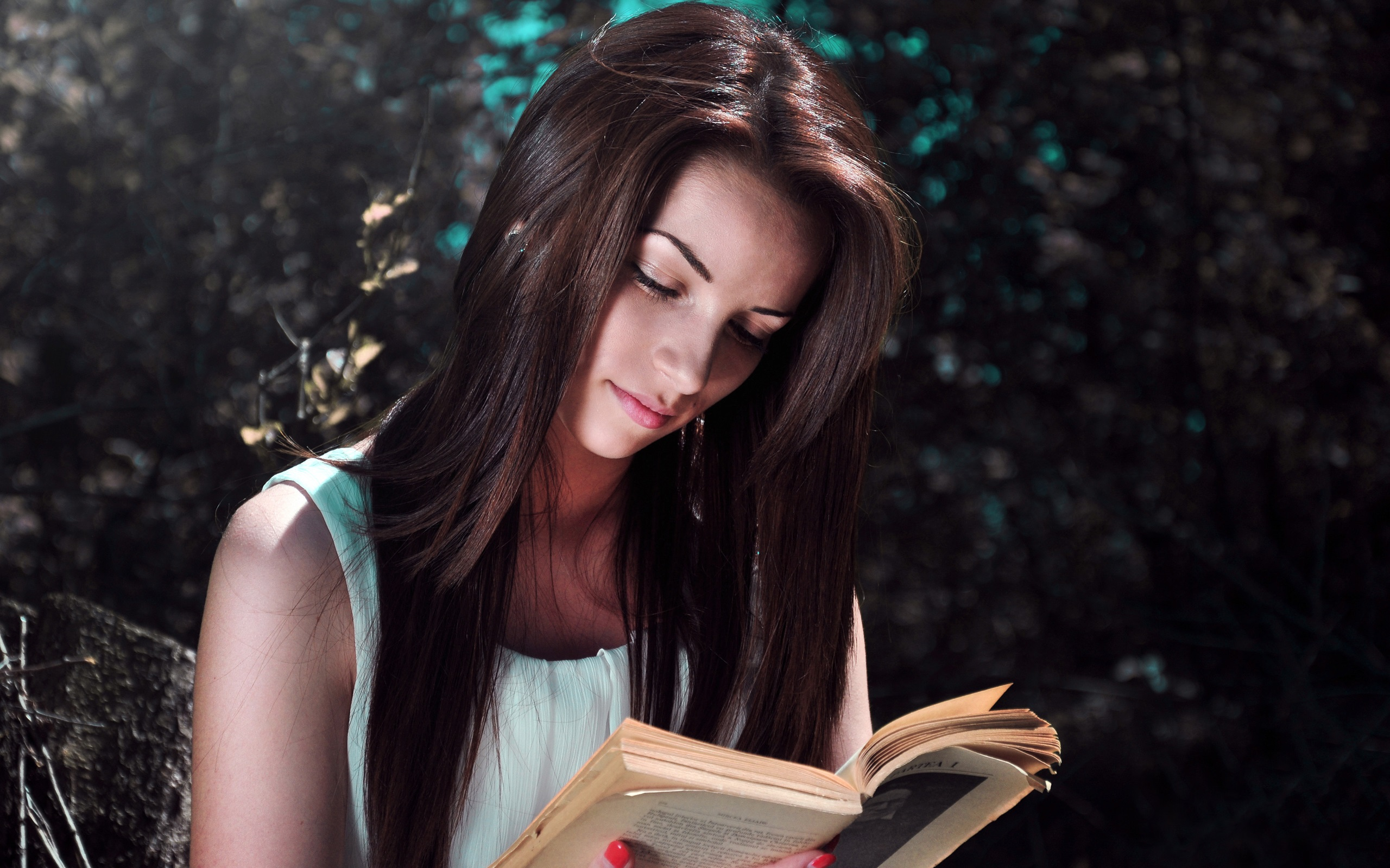 Wallpaper Girl Reading Book Sunlight 2560x1600 Hd Picture