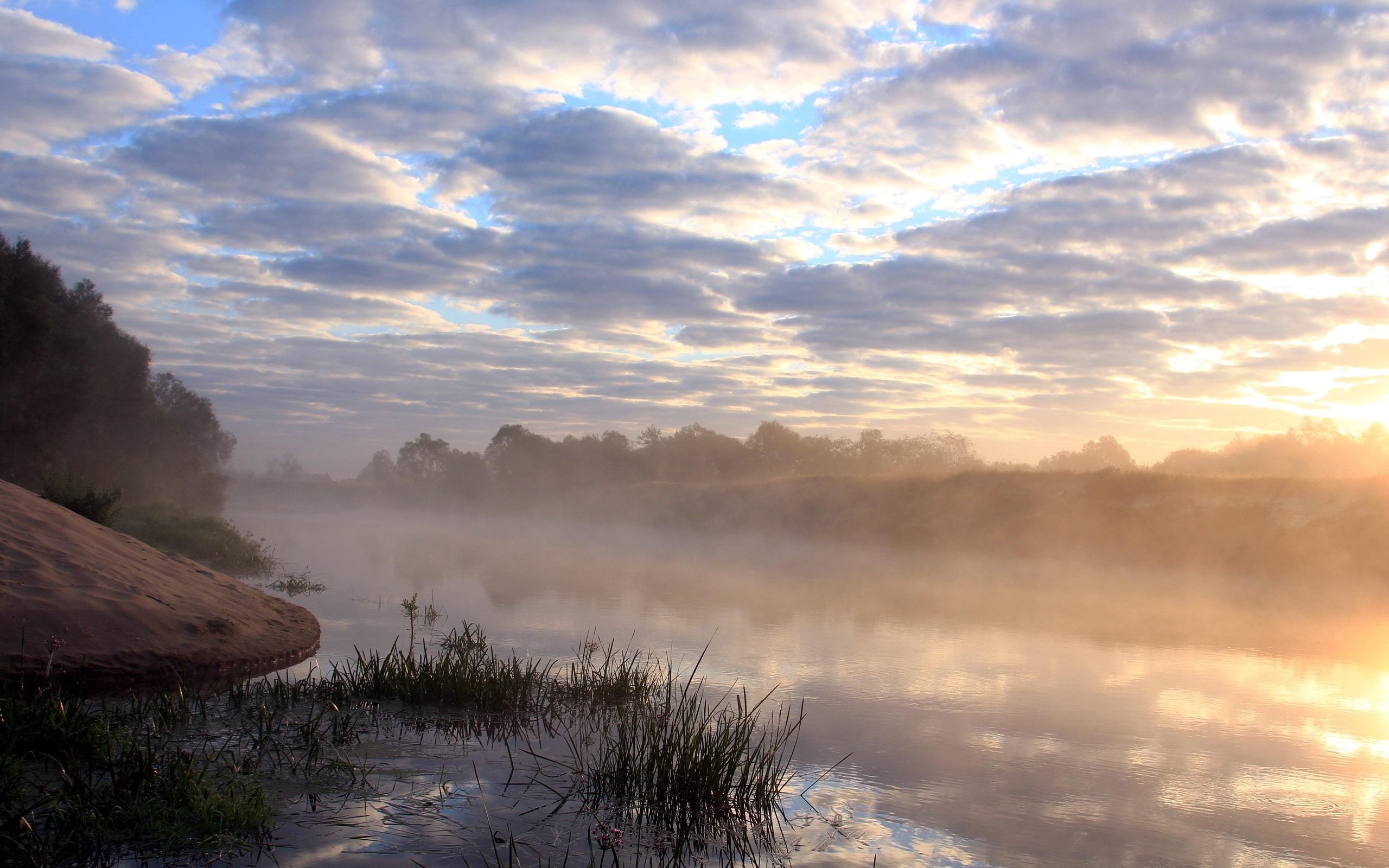 Туман над лесной речкой  № 636709 бесплатно