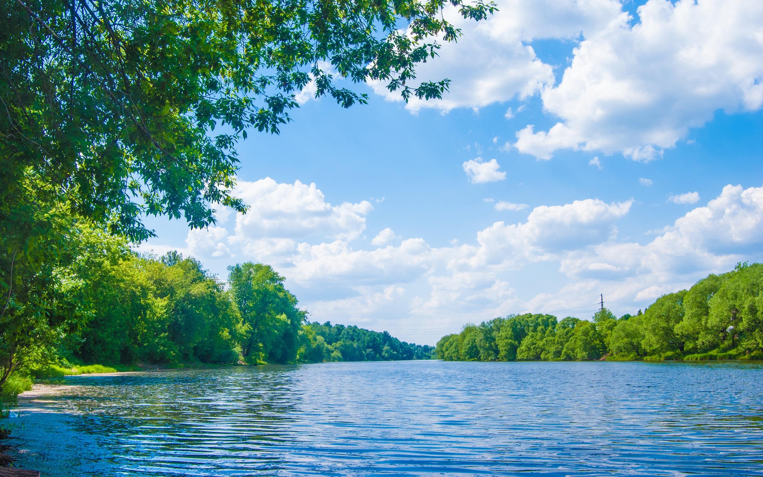 природа река деревья облака небо  № 316512 без смс