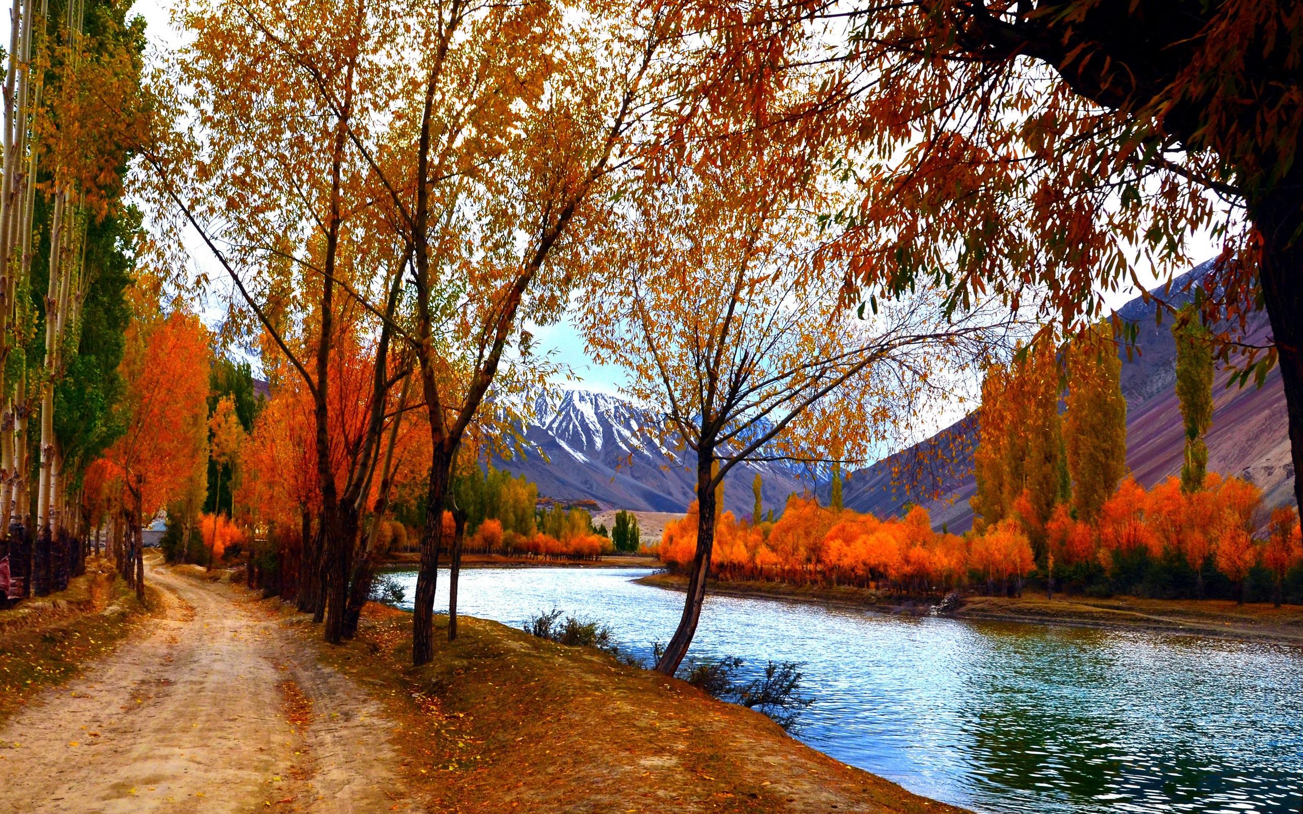 Fonds d'écran Paysages d'automne, les arbres, les feuilles rouges, le lac, les montagnes, le ...