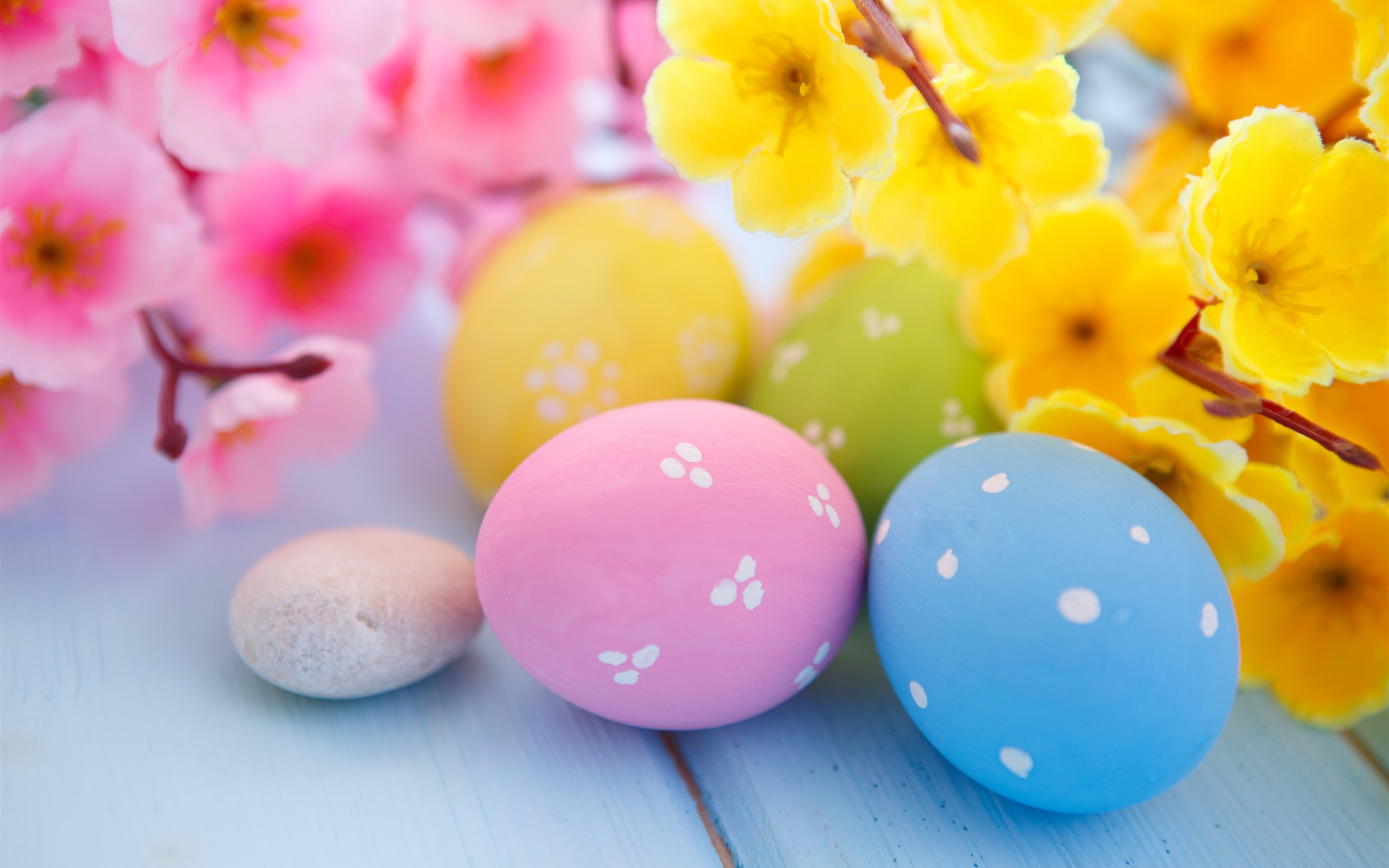 Wallpaper easter flowers eggs spring 2560x1600 hd picture image download this wallpaper mightylinksfo