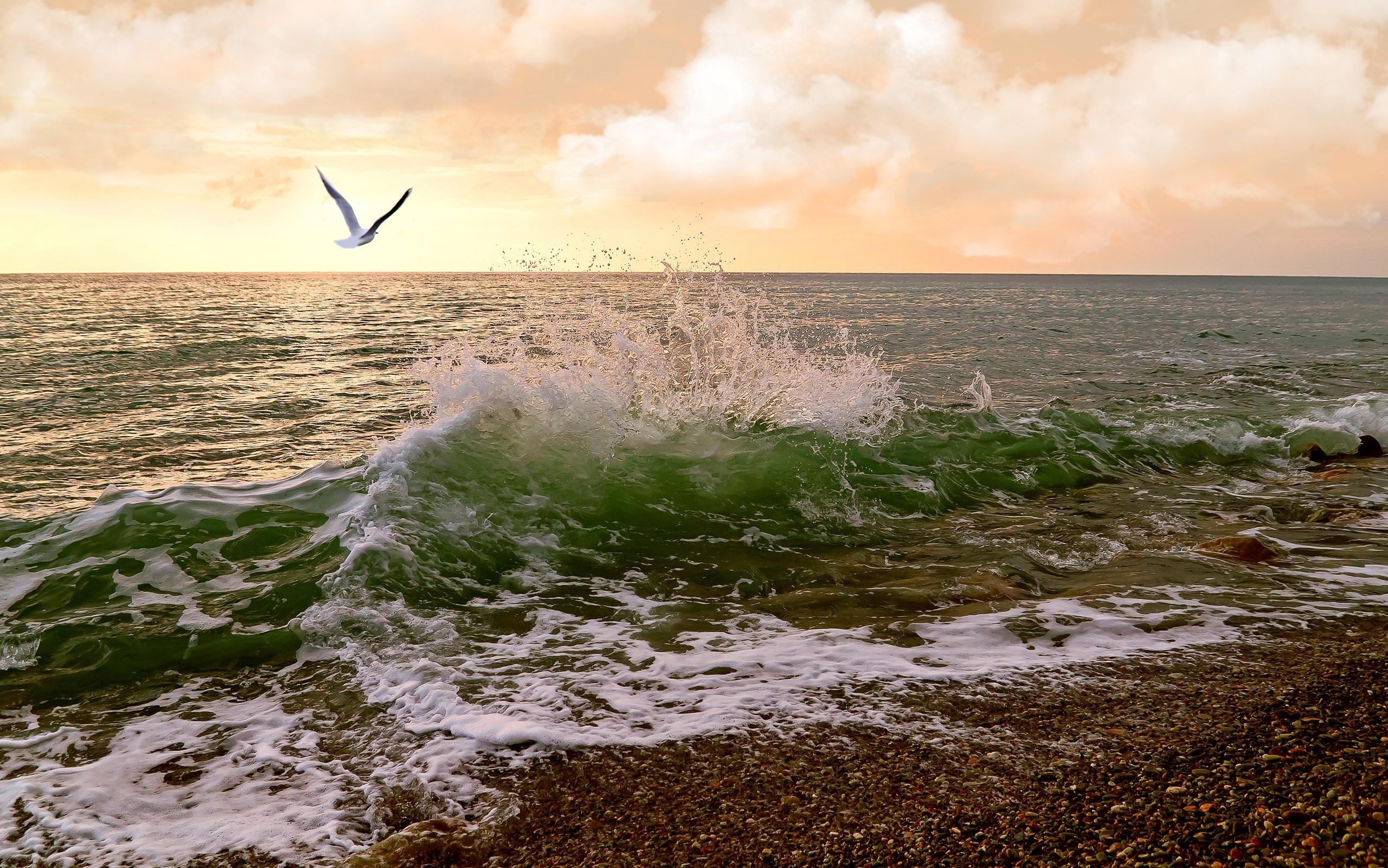 полосы картинка волна утром сегодня