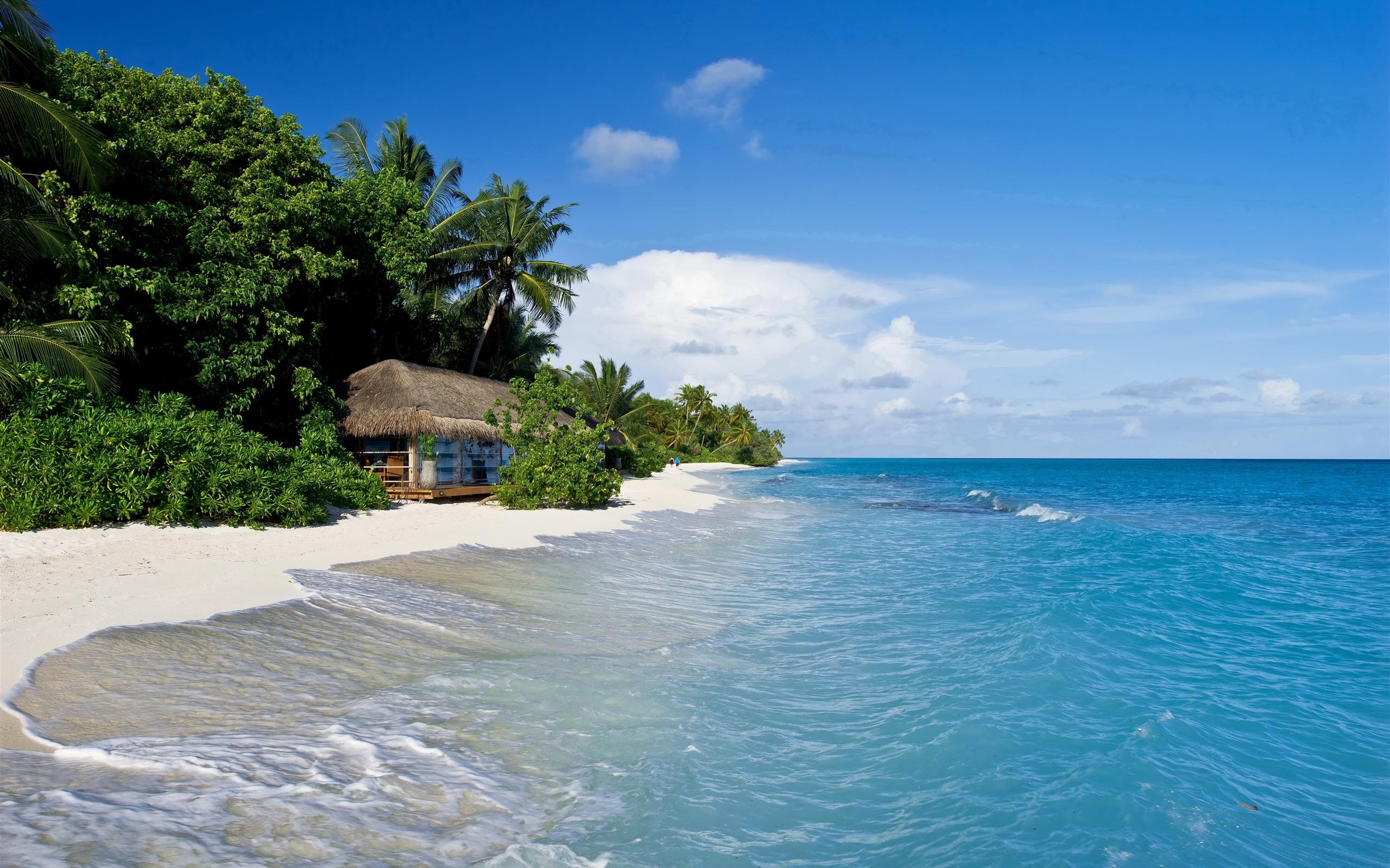 Malediven, Tropisch, Meer, Strand, Palmen, Hütte 2560x1600