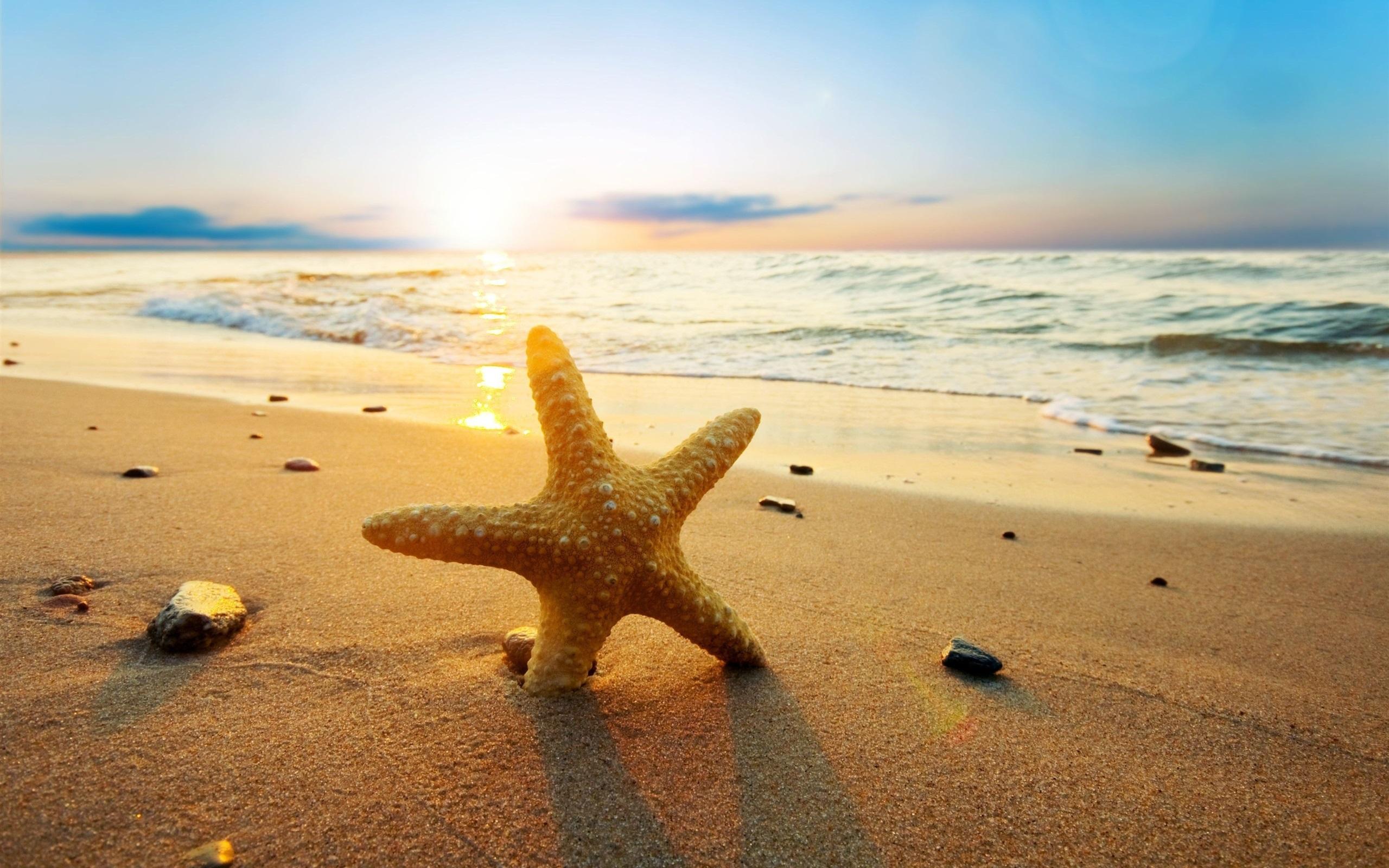 Картинки солнечный день на море