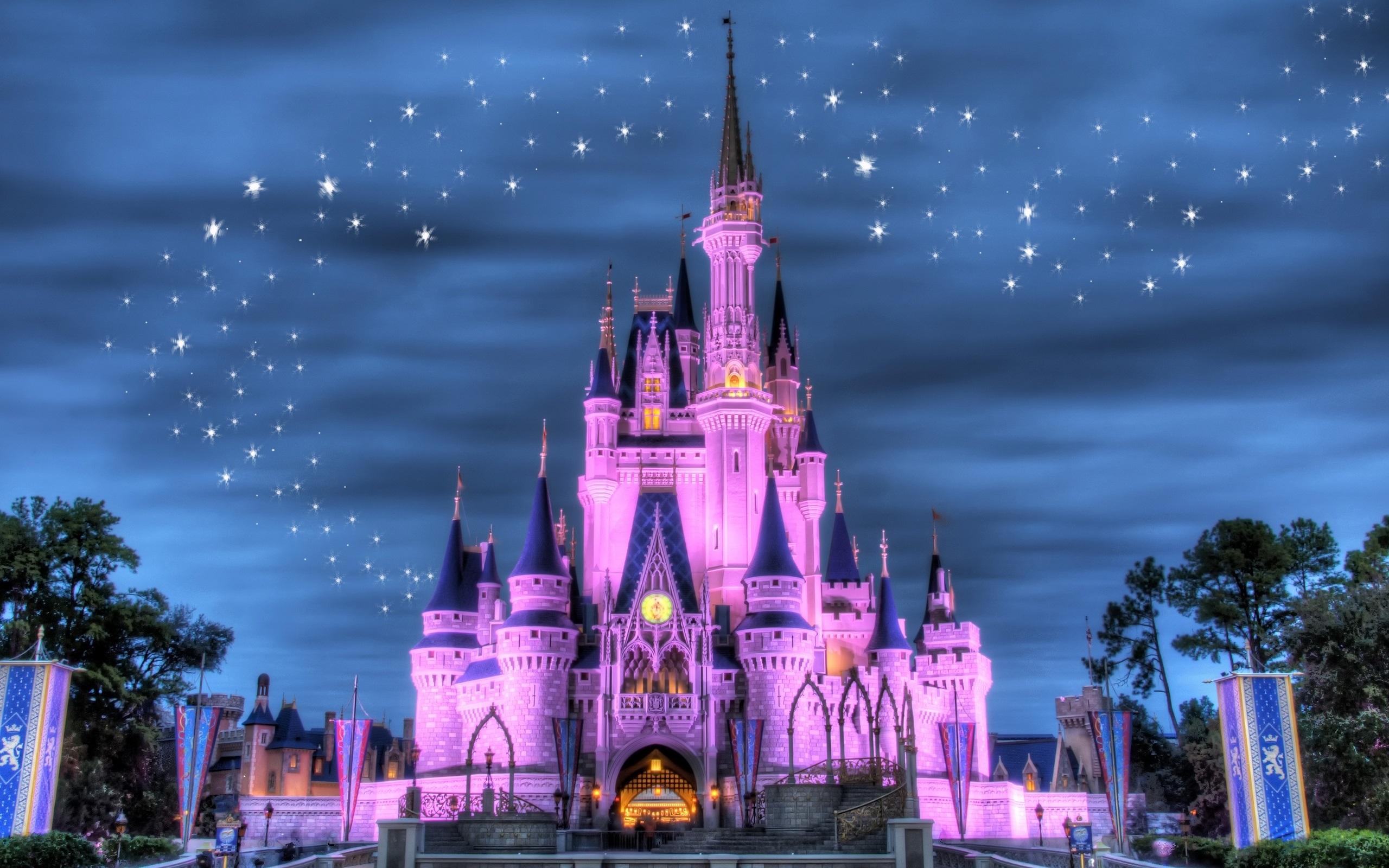 壁紙 ディズニーランド 城 夜 ライト 星 紫スタイル 2560x1600 Hd