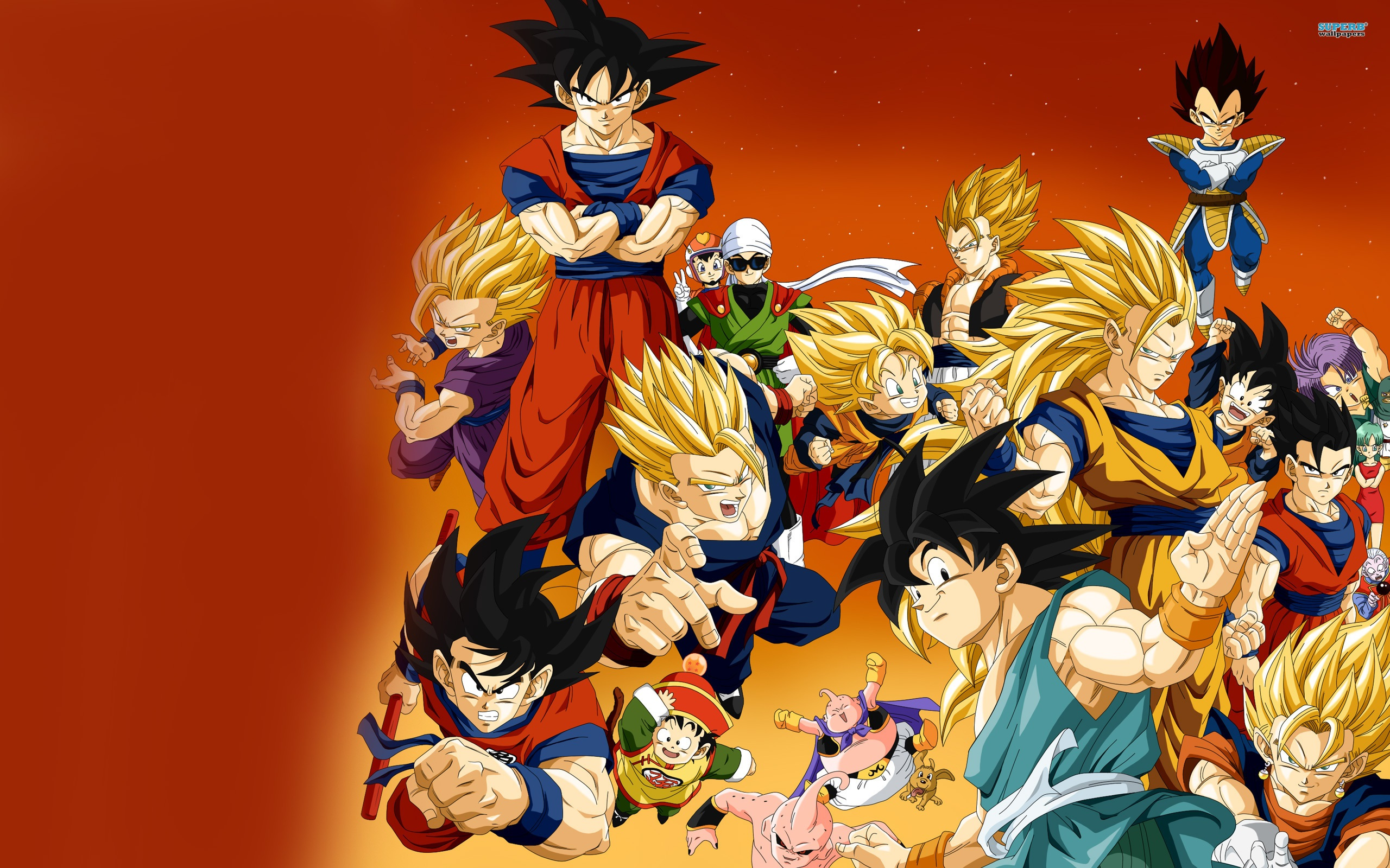 Wallpaper Dragon Ball Z Anime Hd 2560x1600 Hd Picture Image