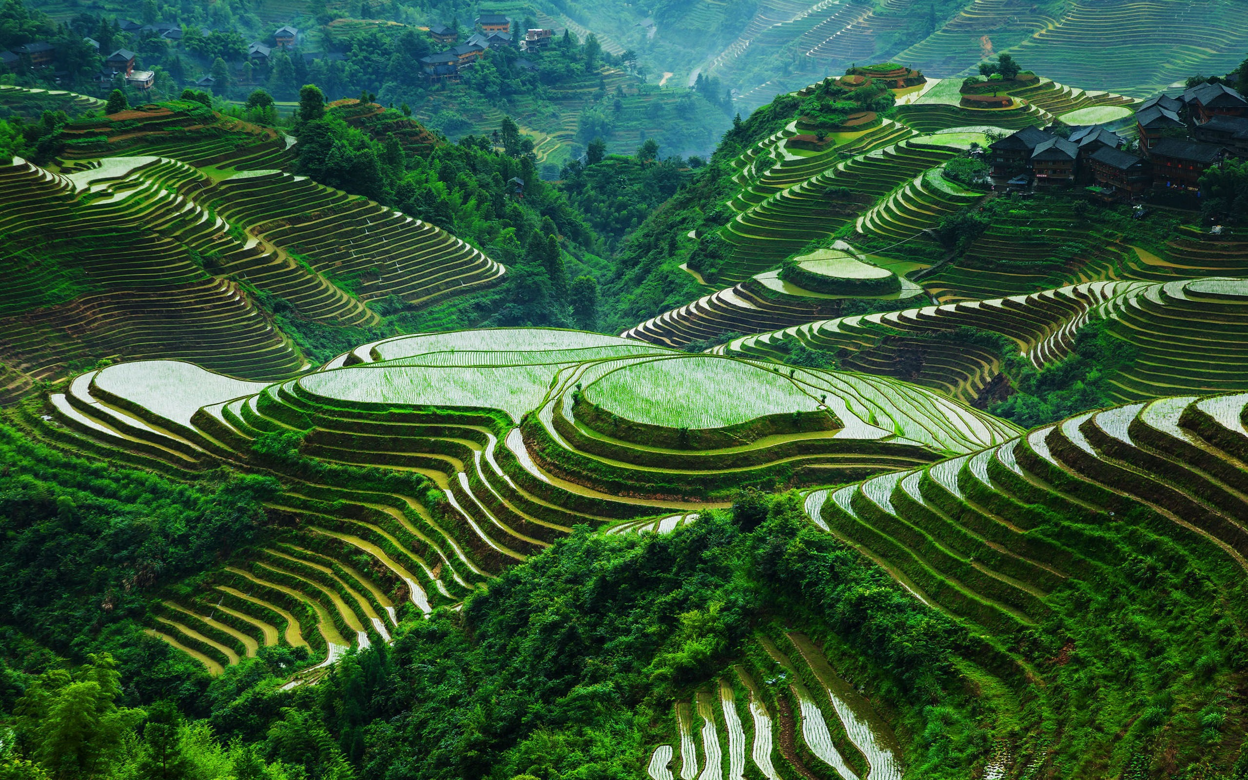 Guangxi longsheng reisterrassen sch ne landschaft china for What is terrace farming definition