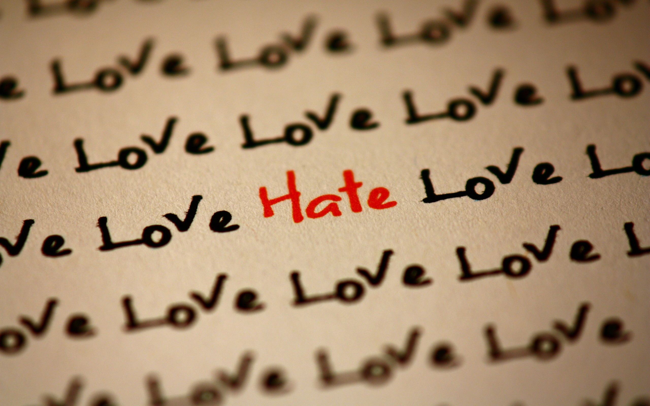 Wallpaper Many Love And Only Hate 2560x1600 Hd Picture Image