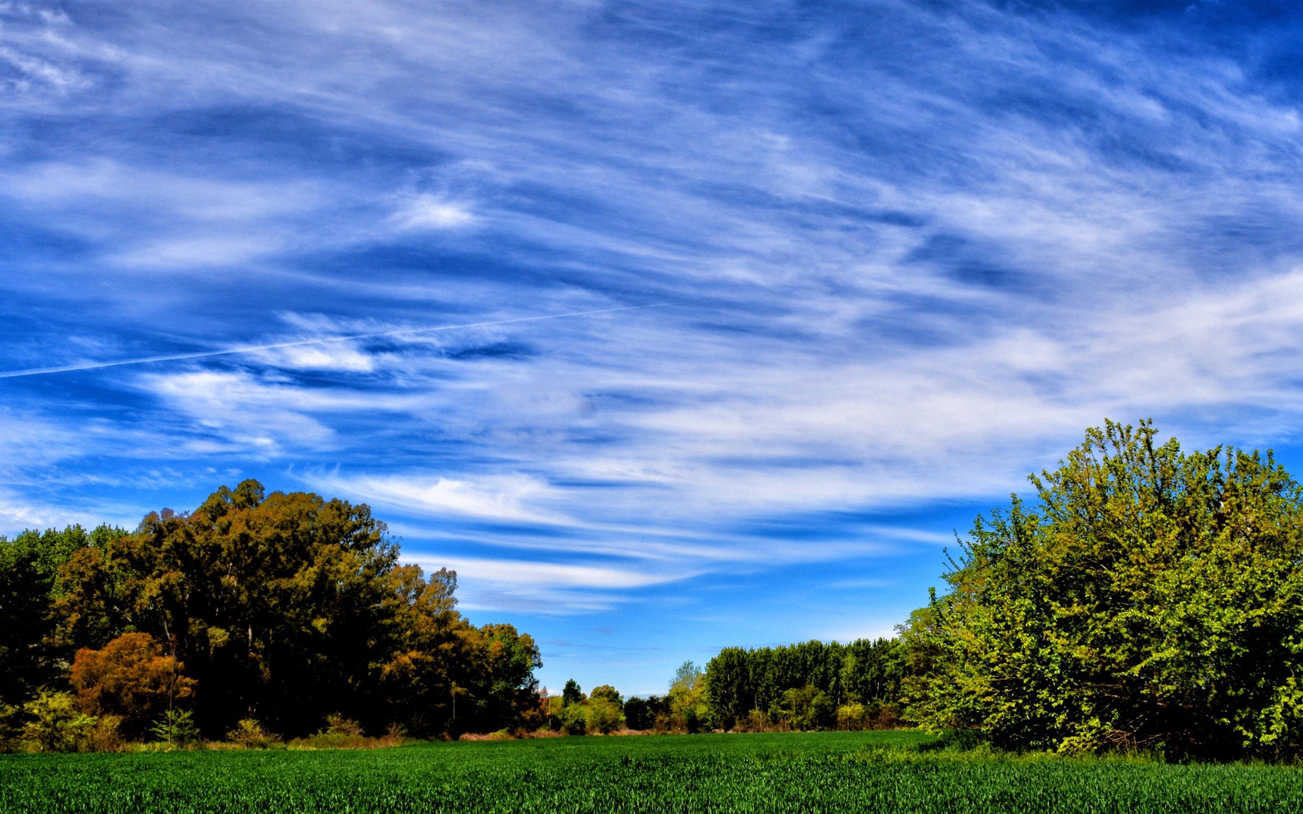 труженицы картинки голубое небо природа ходе судебного