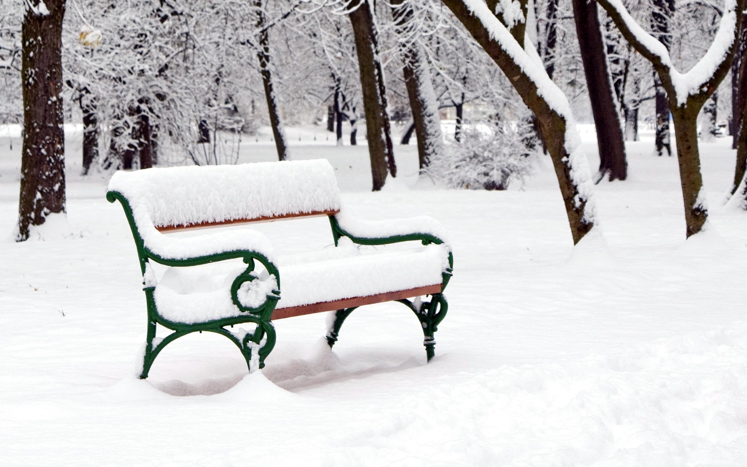 скамейка под снегом картинки каждого