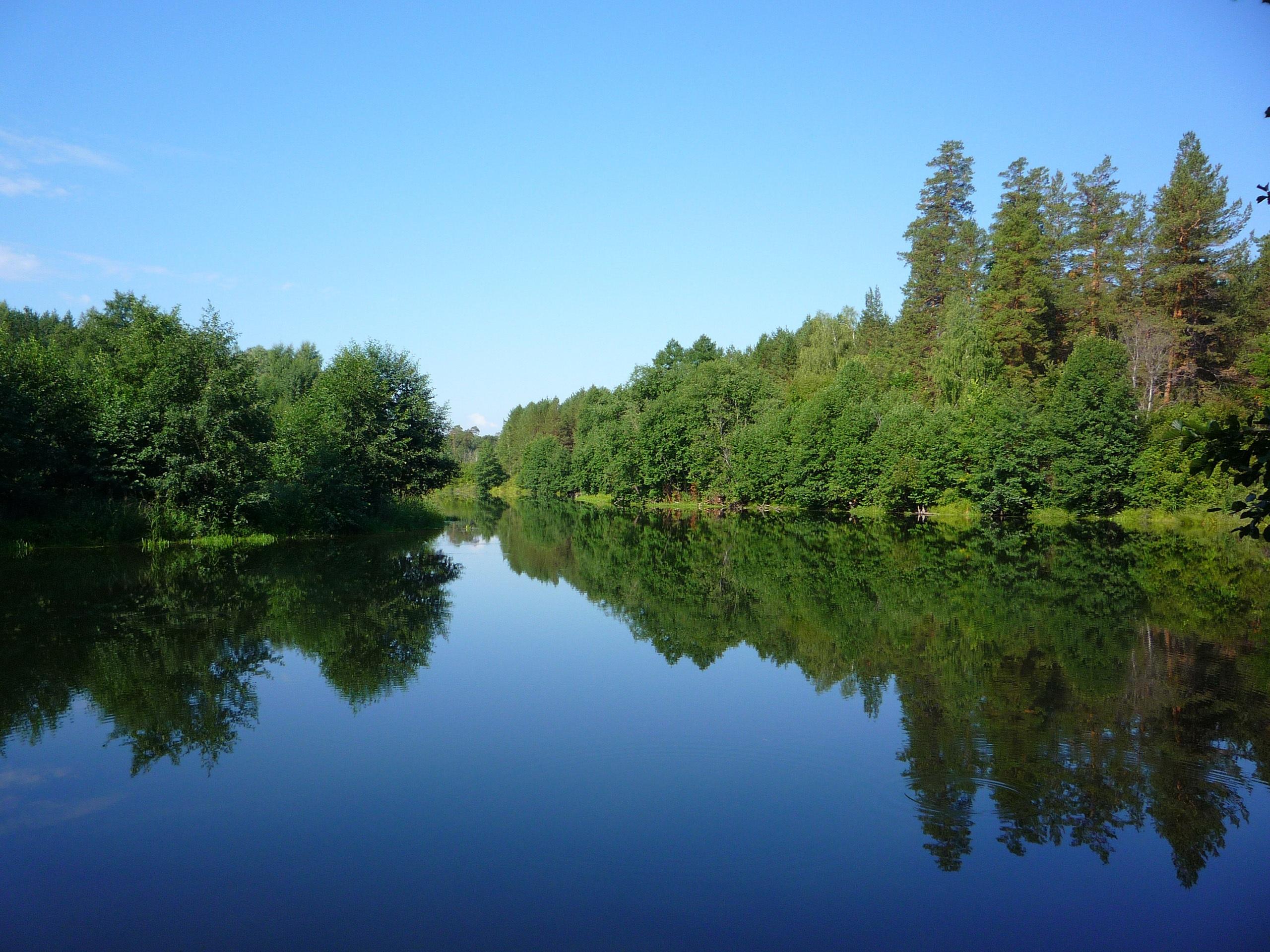 река лес  № 2789174 загрузить