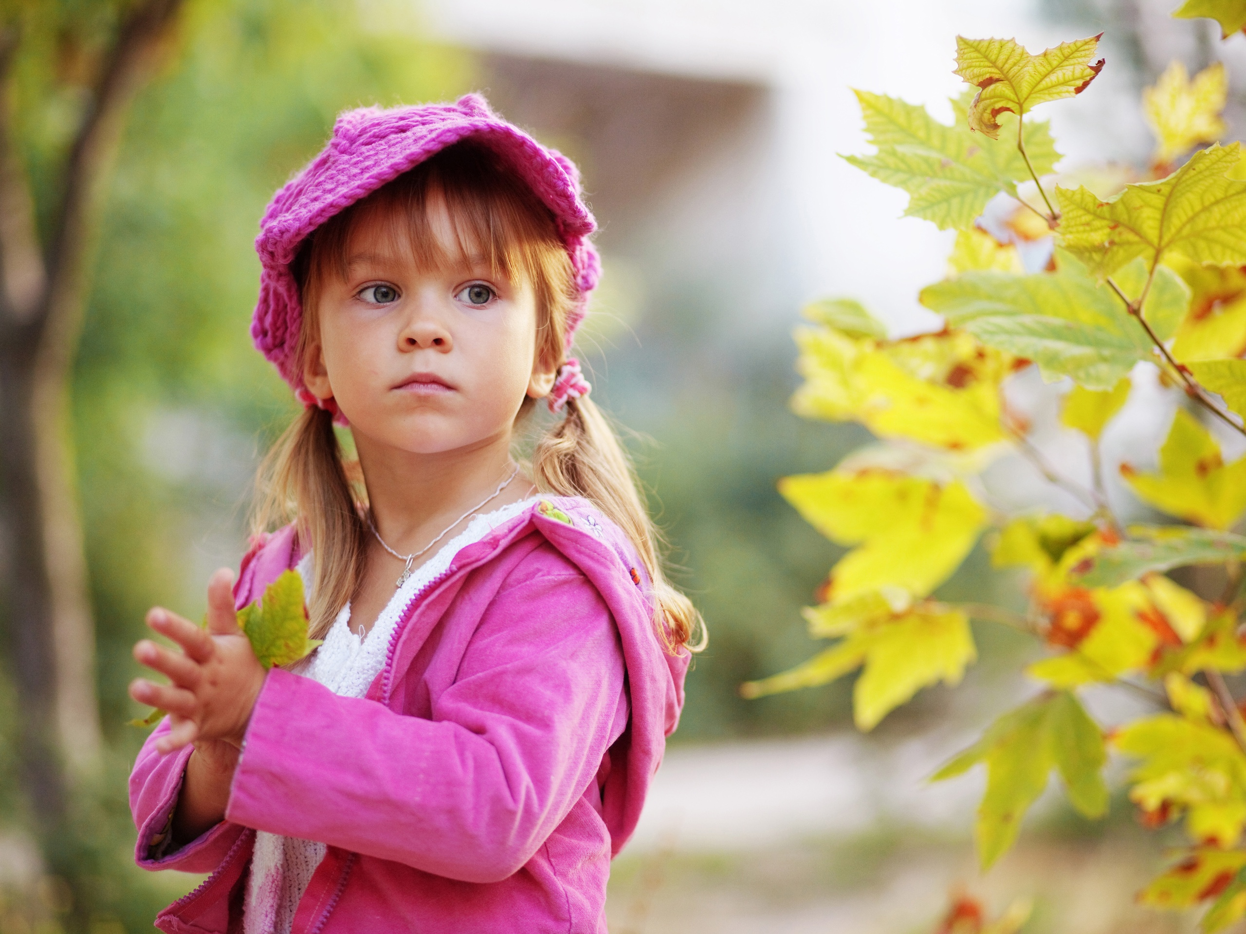 Download Wallpaper 2560x1920 cute little girl holding a maple leaf HD Background