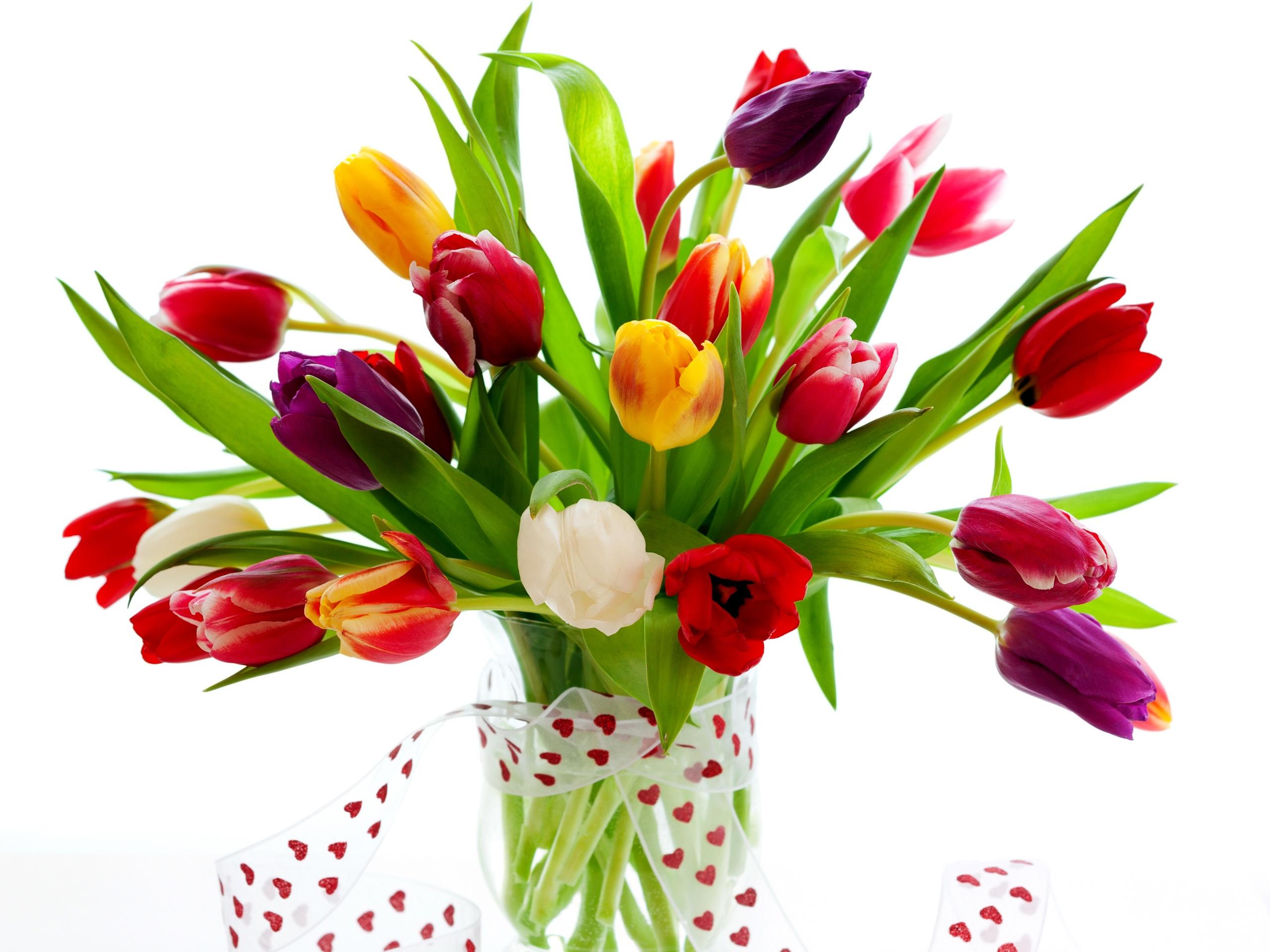Romantische geschenke tulpen hintergrundbilder for Romantische geschenke