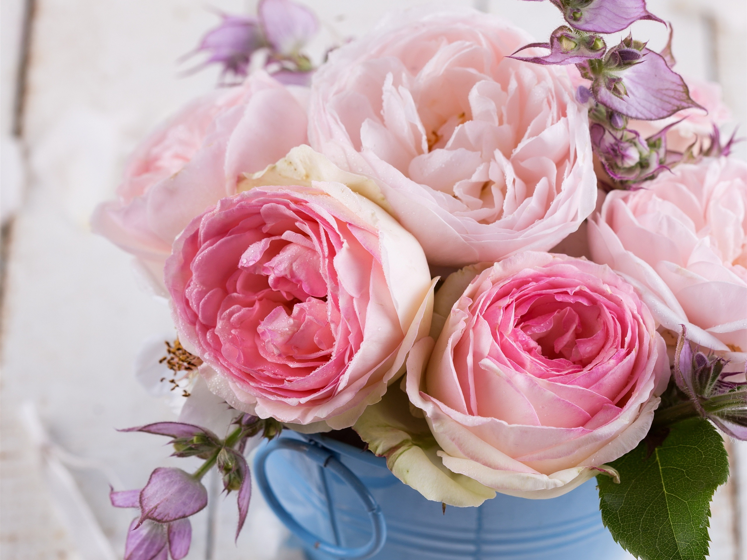 Wallpaper Pink Roses Flowers Bouquet 2560x1920 Hd Picture Image