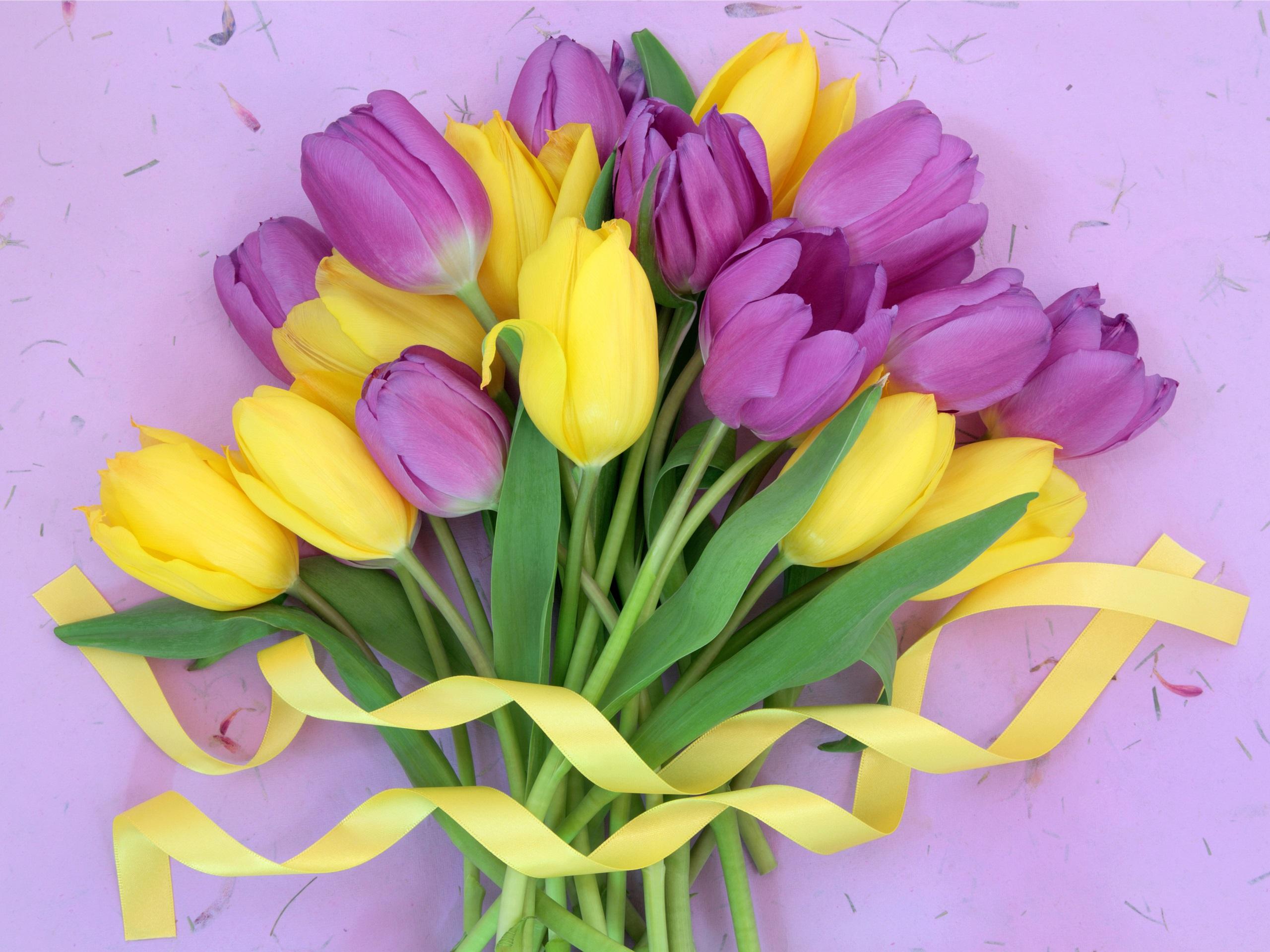 Ramo De Flores Tulipanes Amarillos Y Morados 1080x1920 Iphone 8 7 6