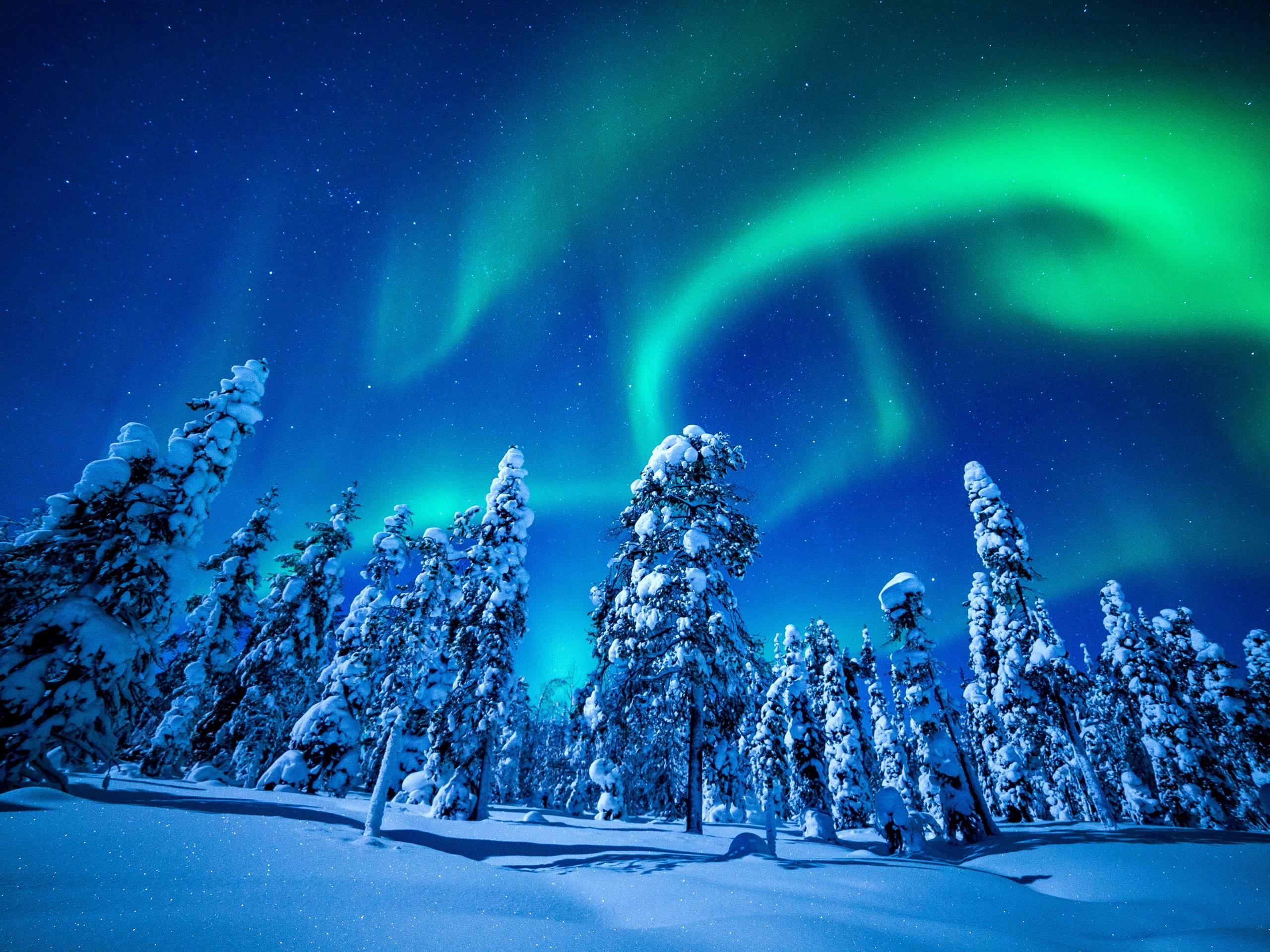 картинки северного сияния зимой для