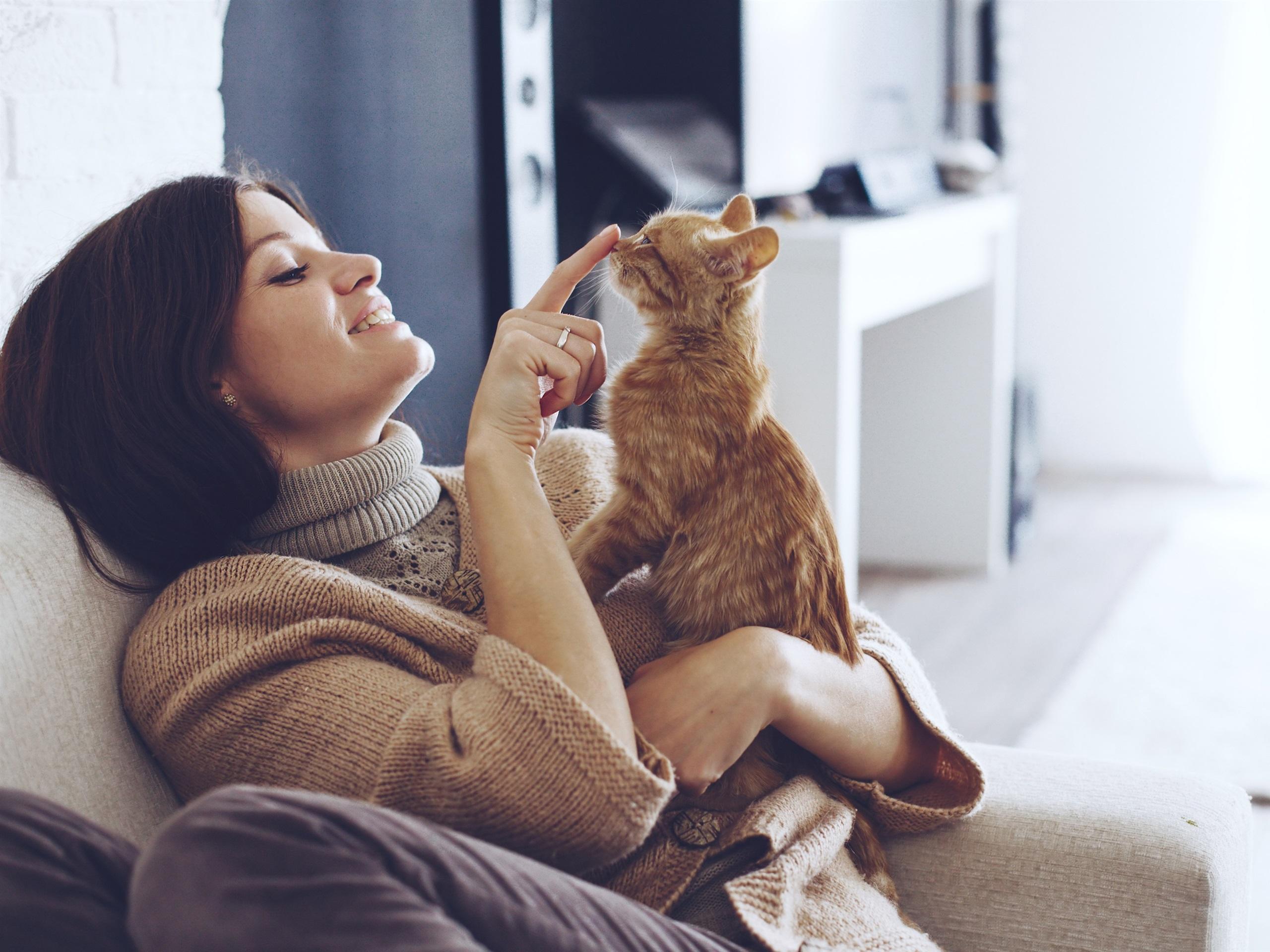 Кошка с девушкой картинка