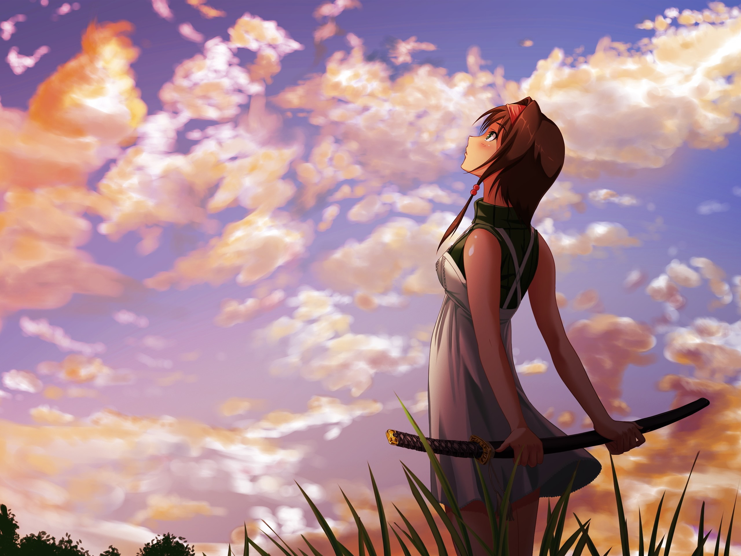 Wallpaper Anime Girl Look At Sky Katana Clouds Sunset 2880x1800 Hd Picture Image